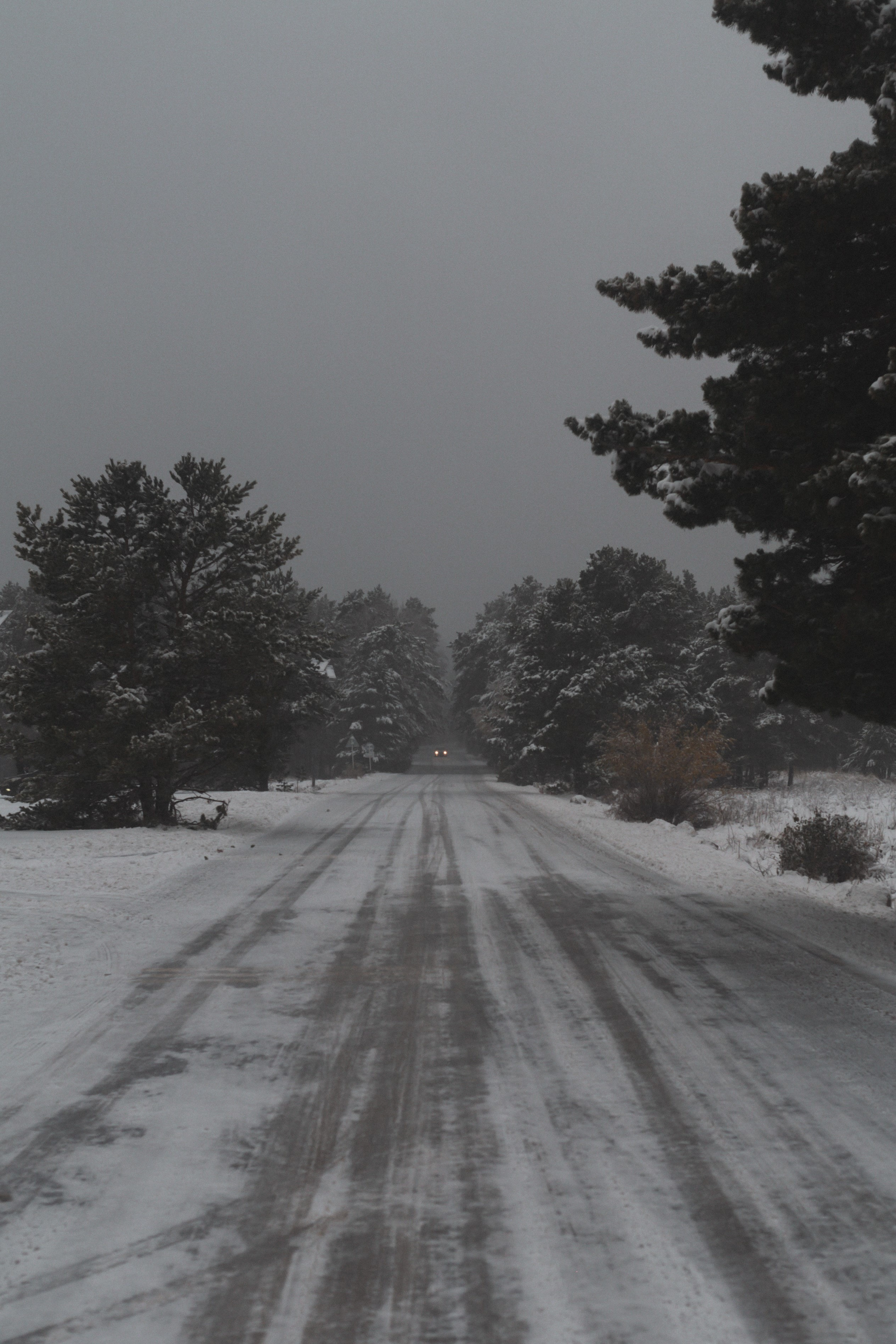 127270 download wallpaper Nature, Road, Trees, Snow, Snow Covered, Snowbound, Winter screensavers and pictures for free