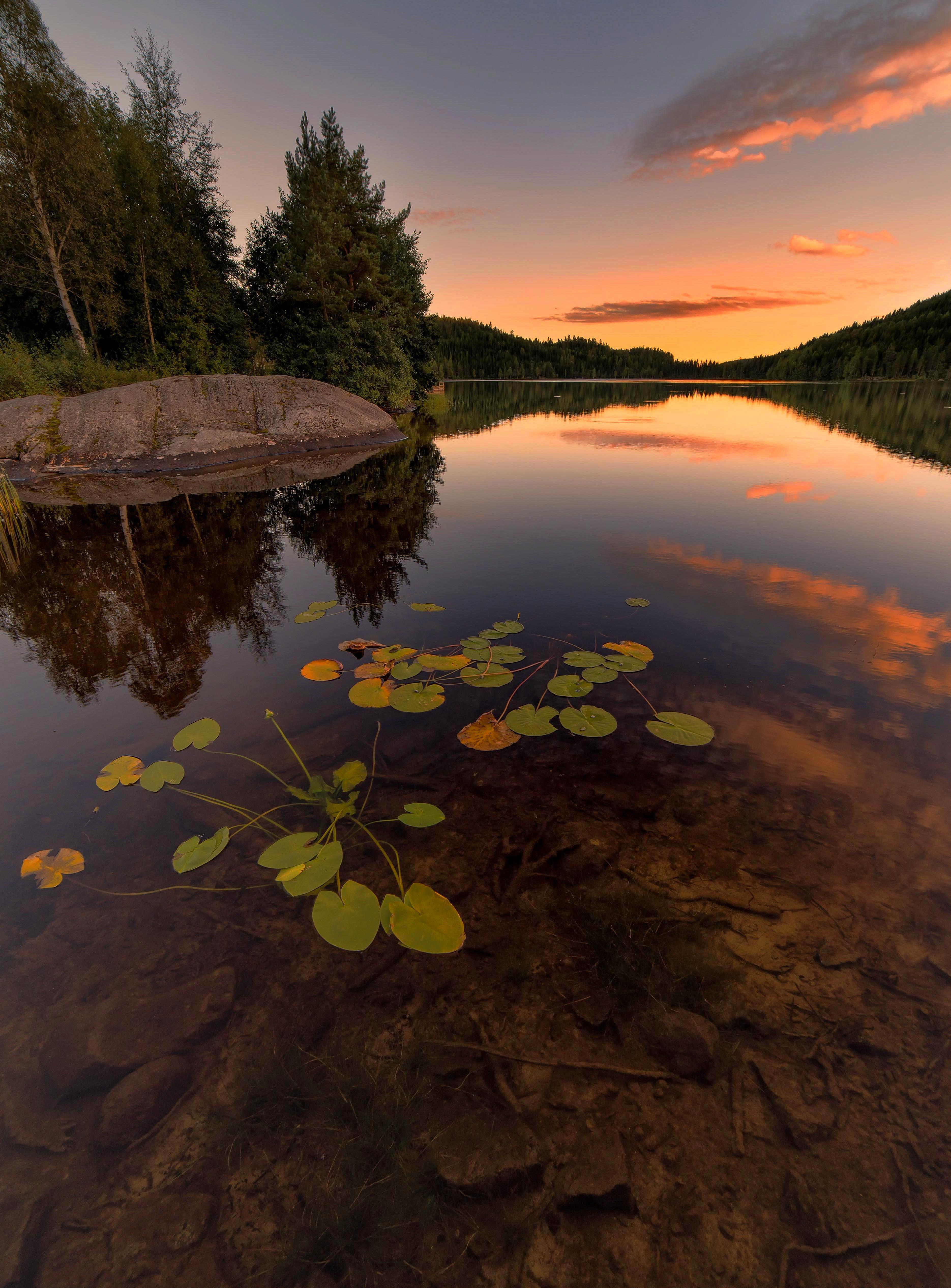 94420 скачать обои Растения, Природа, Деревья, Закат, Камни, Озеро, Ель - заставки и картинки бесплатно