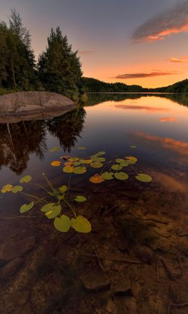 94420 download wallpaper Nature, Lake, Spruce, Fir, Trees, Stones, Sunset, Plants screensavers and pictures for free