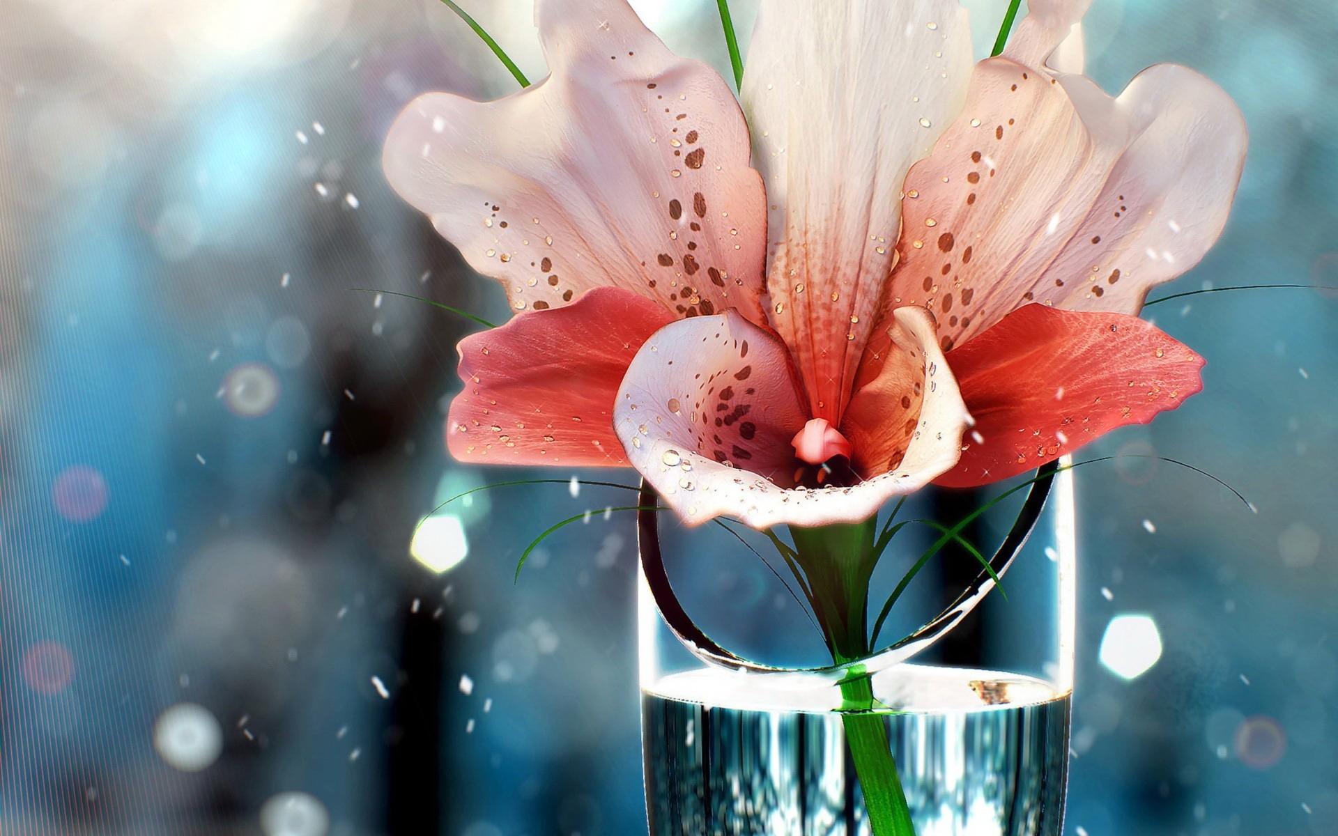 35851 télécharger le fond d'écran Plantes, Fleurs - économiseurs d'écran et images gratuitement