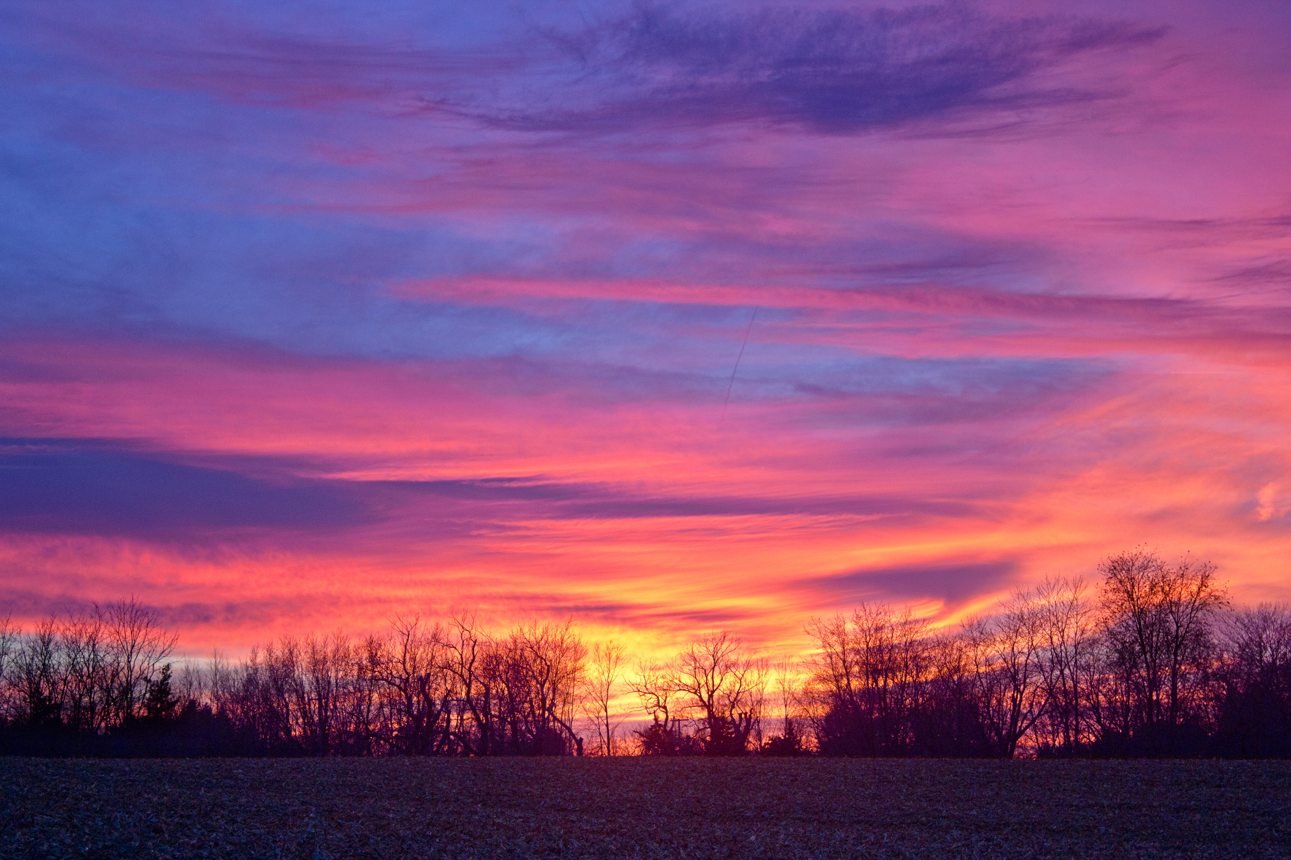 121214 free wallpaper 720x1520 for phone, download images Nature, Trees, Sky, Horizon, Colorful 720x1520 for mobile