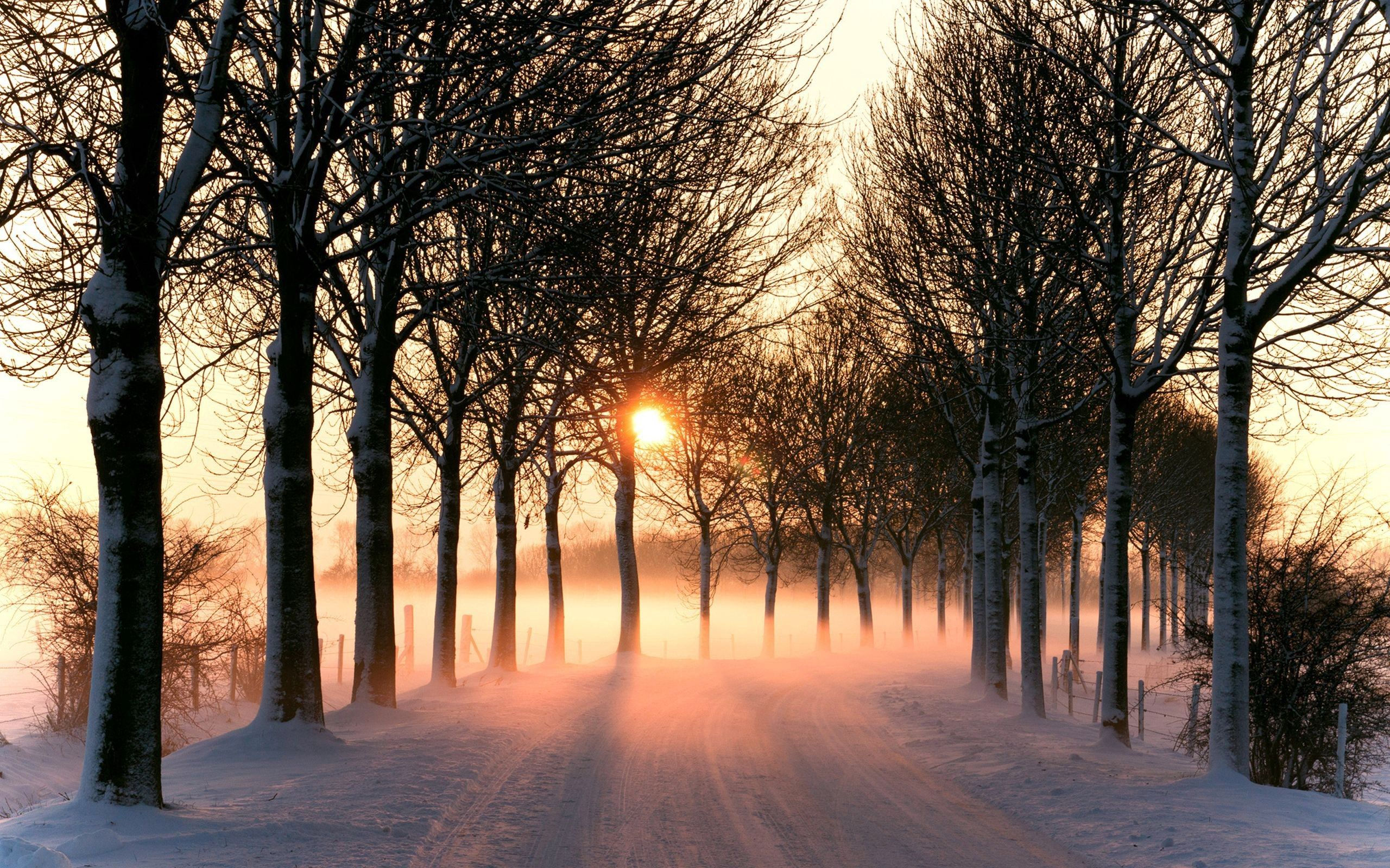 109624 Screensavers and Wallpapers Road for phone. Download Winter, Nature, Snow, Road pictures for free