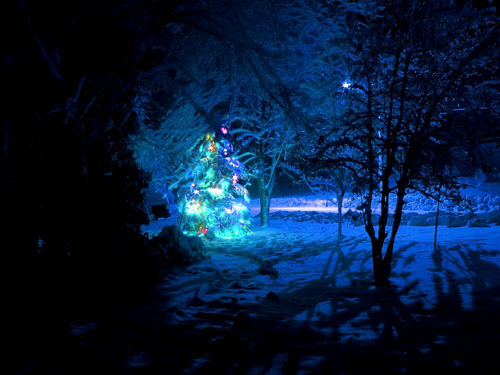 95716 download wallpaper Holidays, Christmas Tree, Snow, Forest, New Year, Christmas, Garlands, Garland screensavers and pictures for free