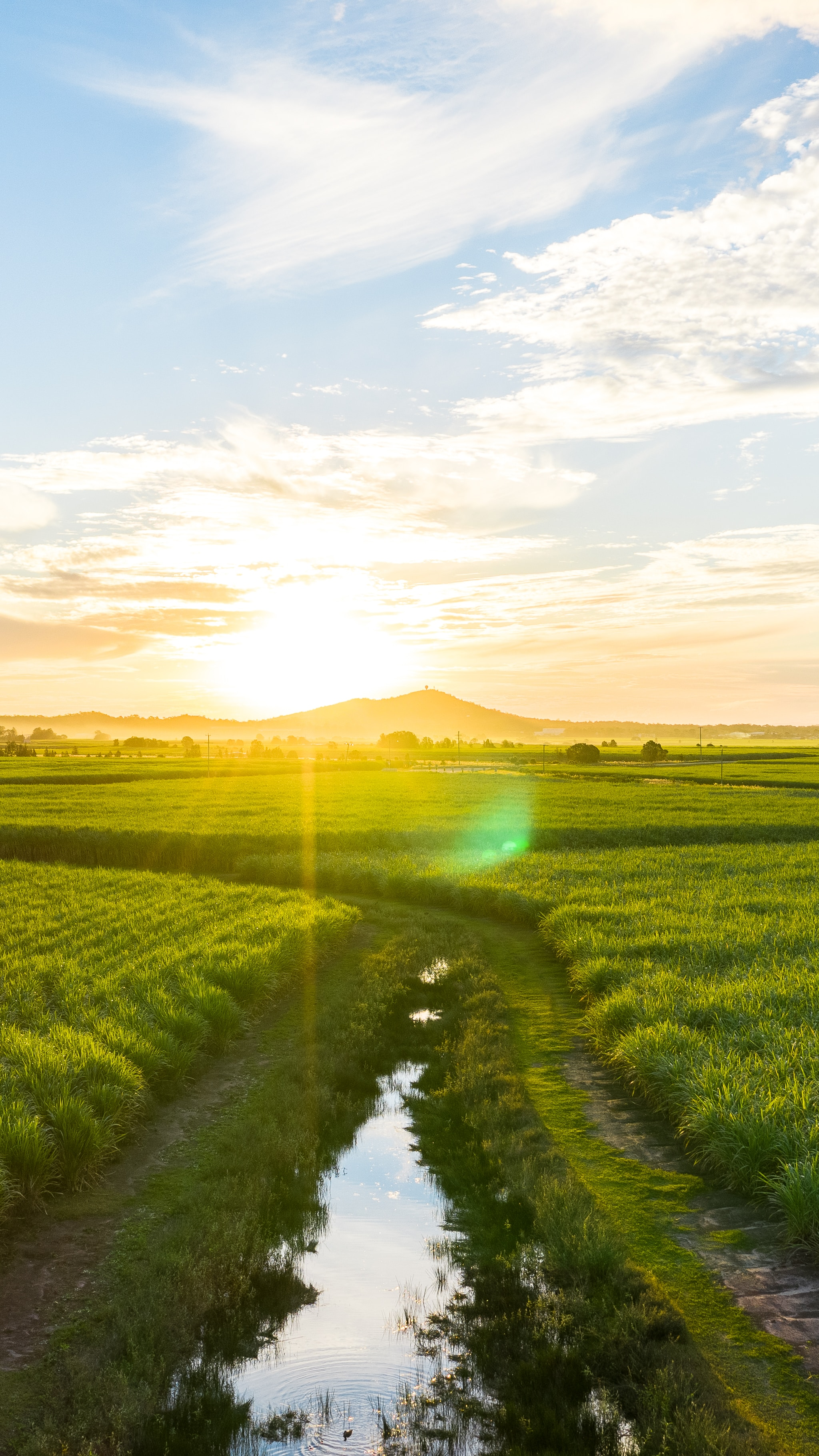 125077 download wallpaper Nature, Road, Field, Sunlight, Bright, Glare, Landscape screensavers and pictures for free