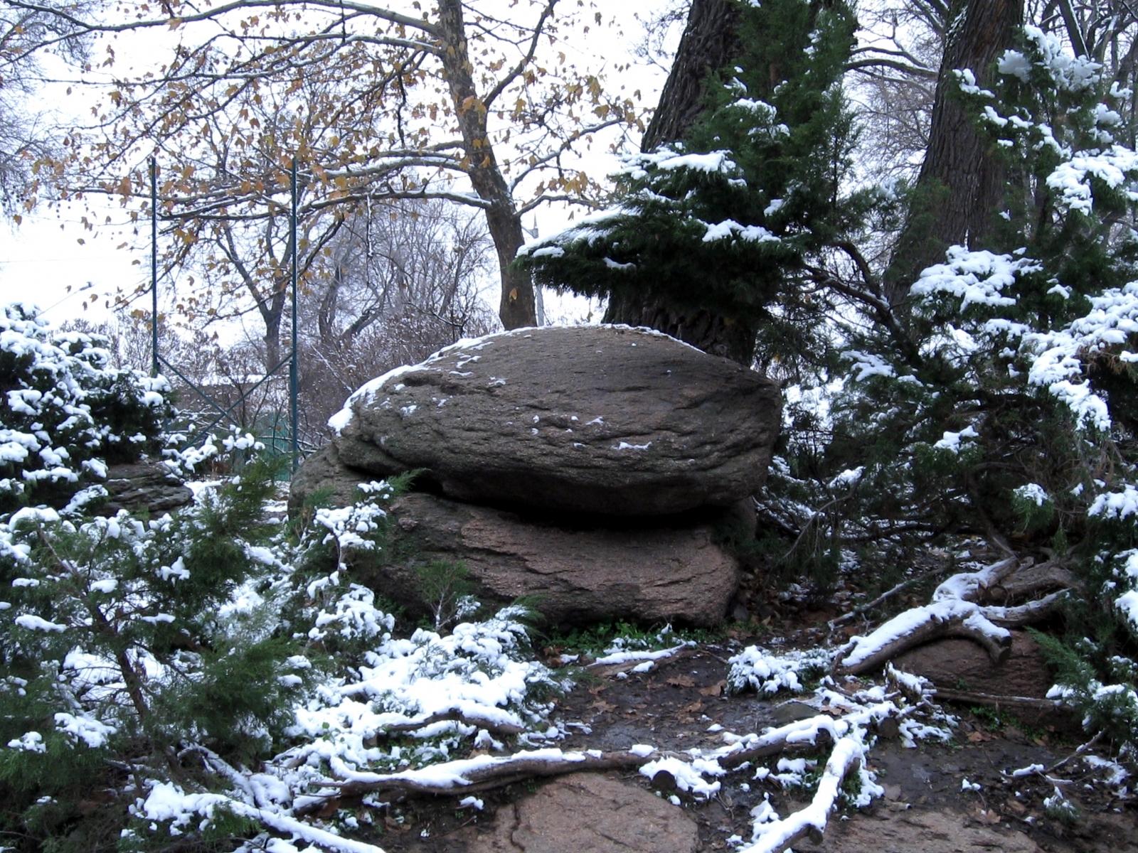 2273 скачать обои Пейзаж, Зима, Деревья, Камни - заставки и картинки бесплатно