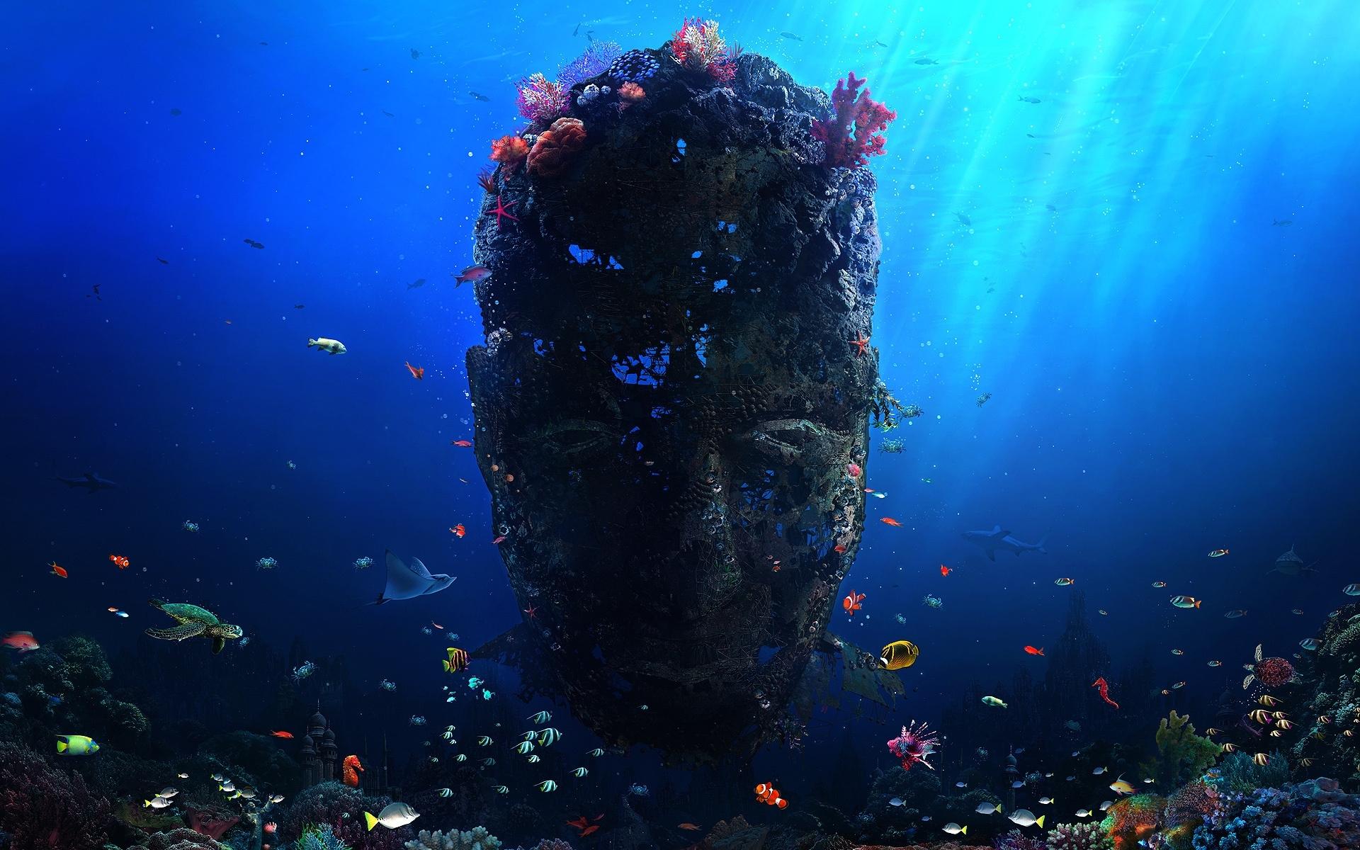 26667 免費下載壁紙 景观, 幻想, 海, 鱼, 珊瑚 屏保和圖片
