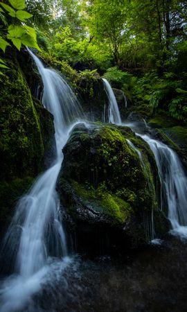 77404 скачать обои Природа, Водопад, Камни, Поток, Растения, Ветки - заставки и картинки бесплатно