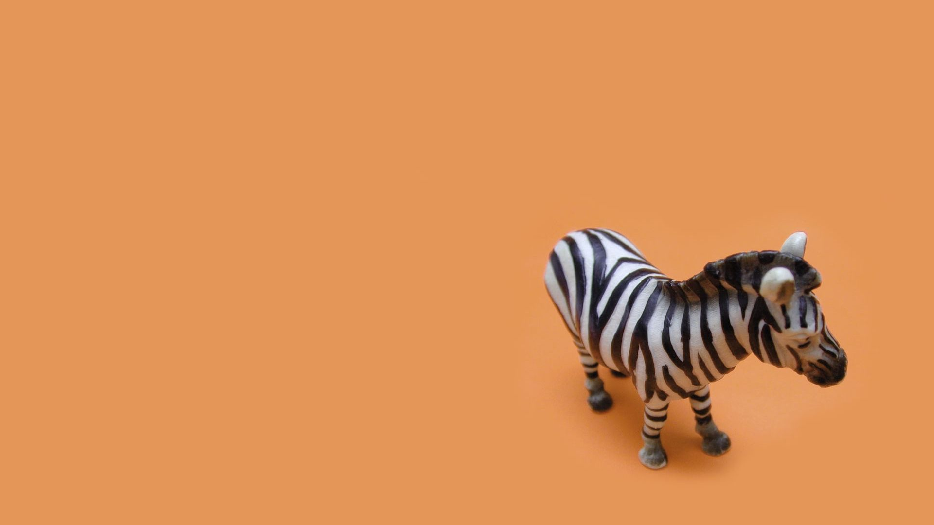 109362 download wallpaper Miscellanea, Miscellaneous, Zebra, Toy, Background, Striped screensavers and pictures for free