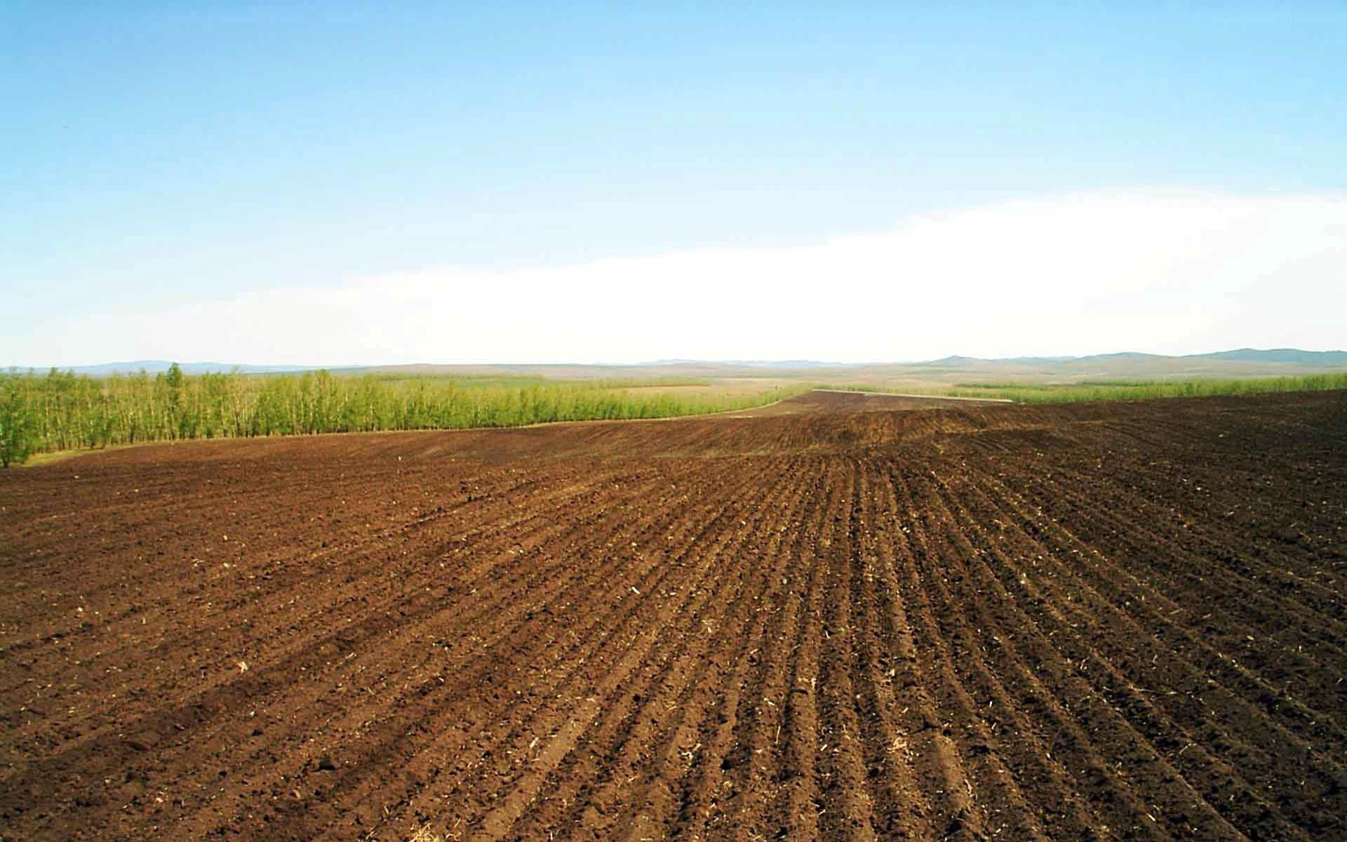 61582 Screensavers and Wallpapers Agriculture for phone. Download Nature, Lines, Field, Rows, Ranks, Agriculture, Arable Land pictures for free
