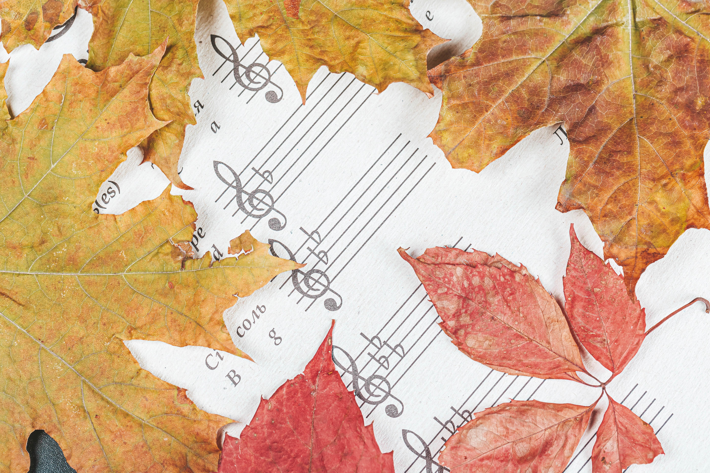 65566 скачать обои Разное, Ноты, Буквы, Листья, Осень - заставки и картинки бесплатно