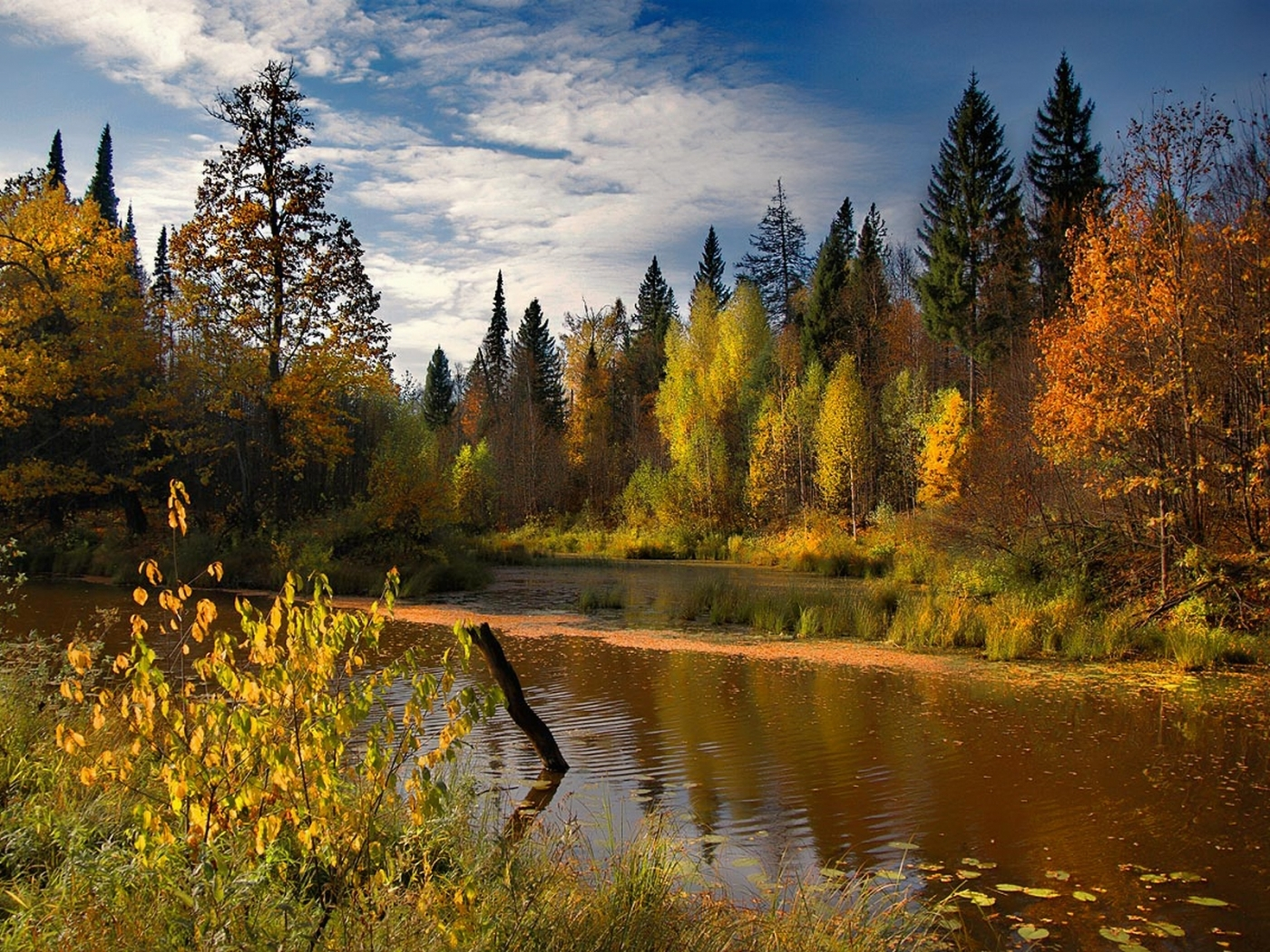30216 download wallpaper Landscape, Rivers, Autumn screensavers and pictures for free