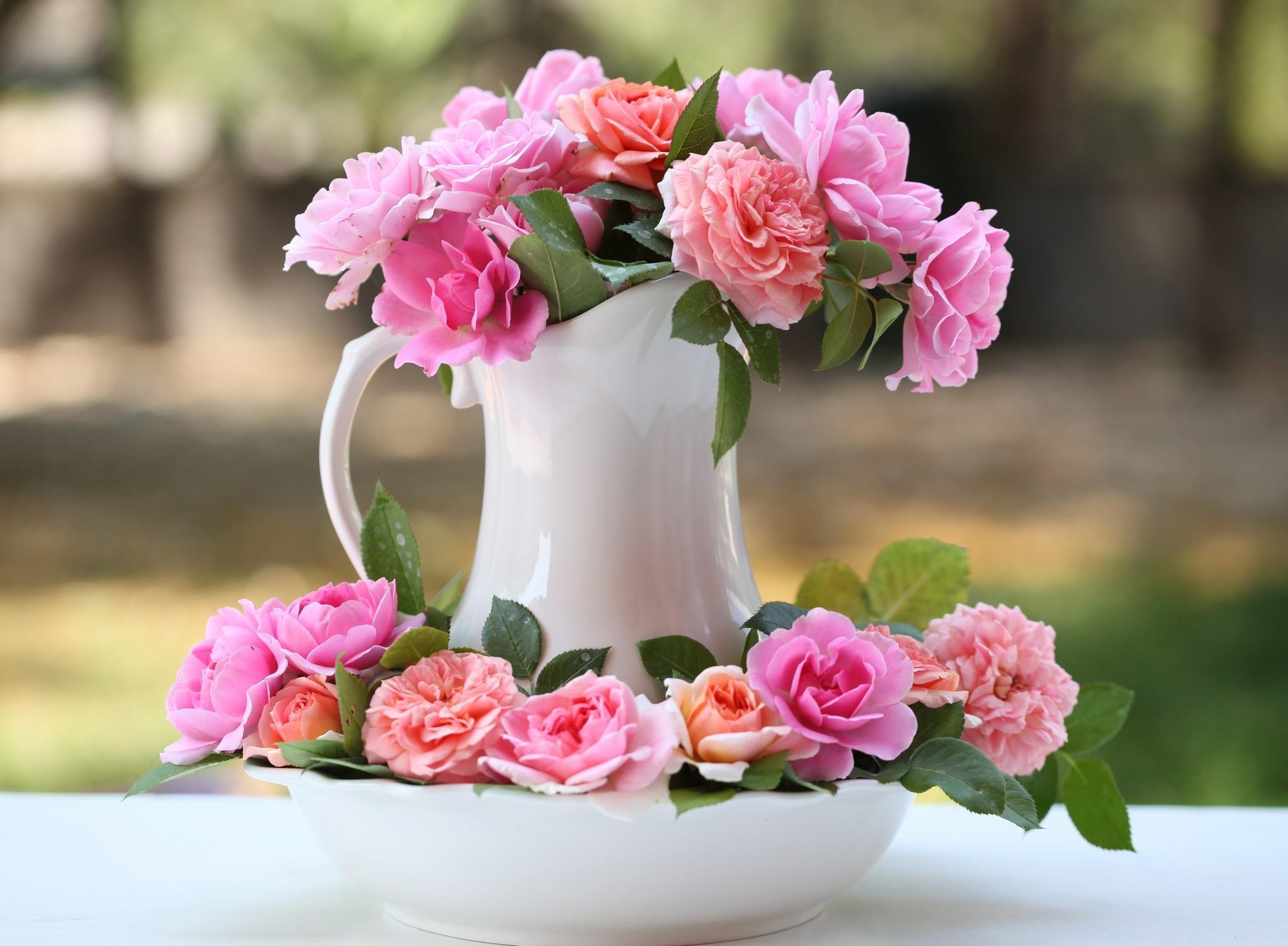 133578 descargar fondo de pantalla Roses, Flores, Ramo, Jarra, Jarro, Cogollos, Brotes: protectores de pantalla e imágenes gratis