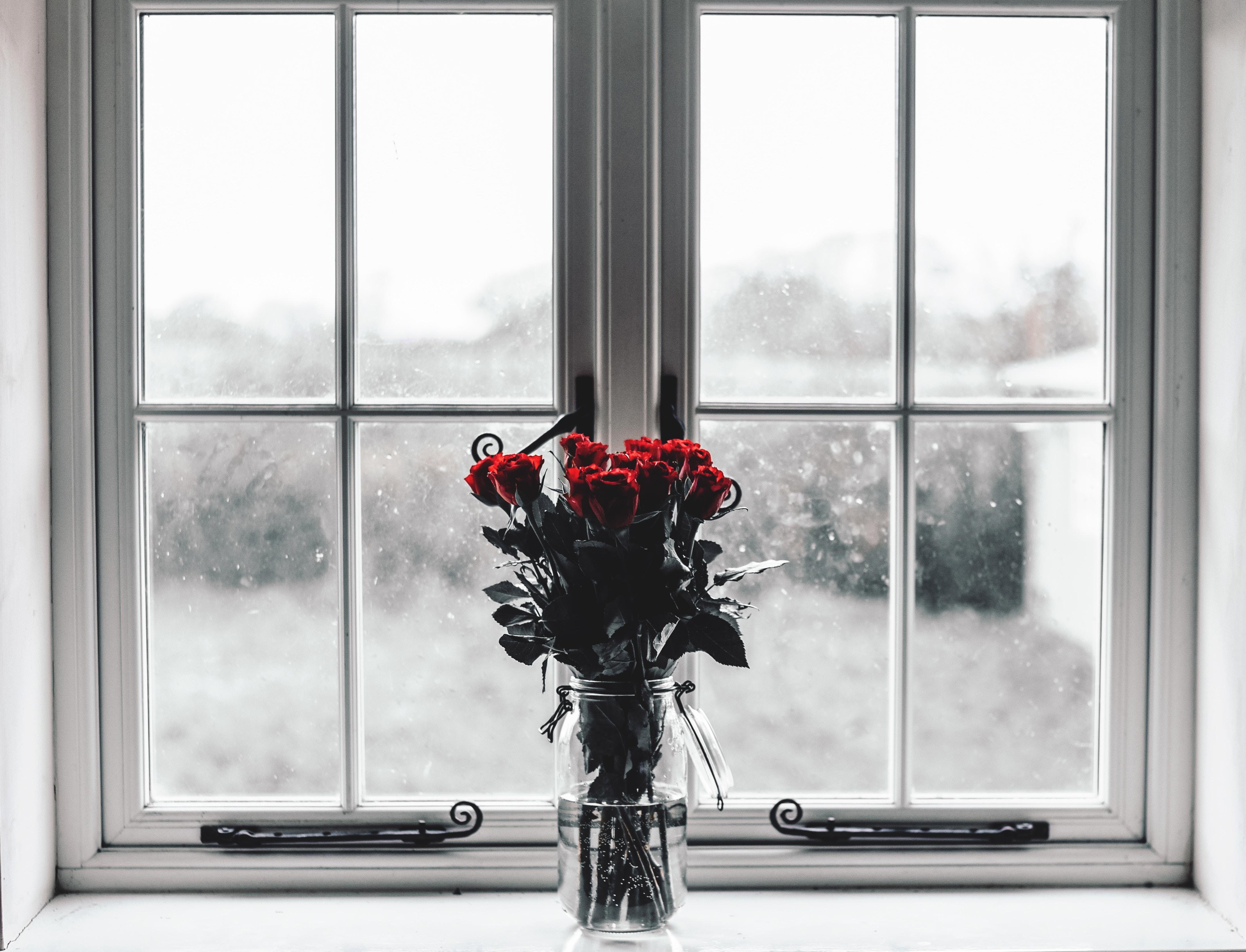 73321 скачать обои Розы, Окно, Цветы, Букет, Ваза - заставки и картинки бесплатно