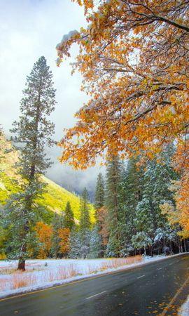 20708 скачать обои Пейзаж, Деревья, Дороги, Осень - заставки и картинки бесплатно