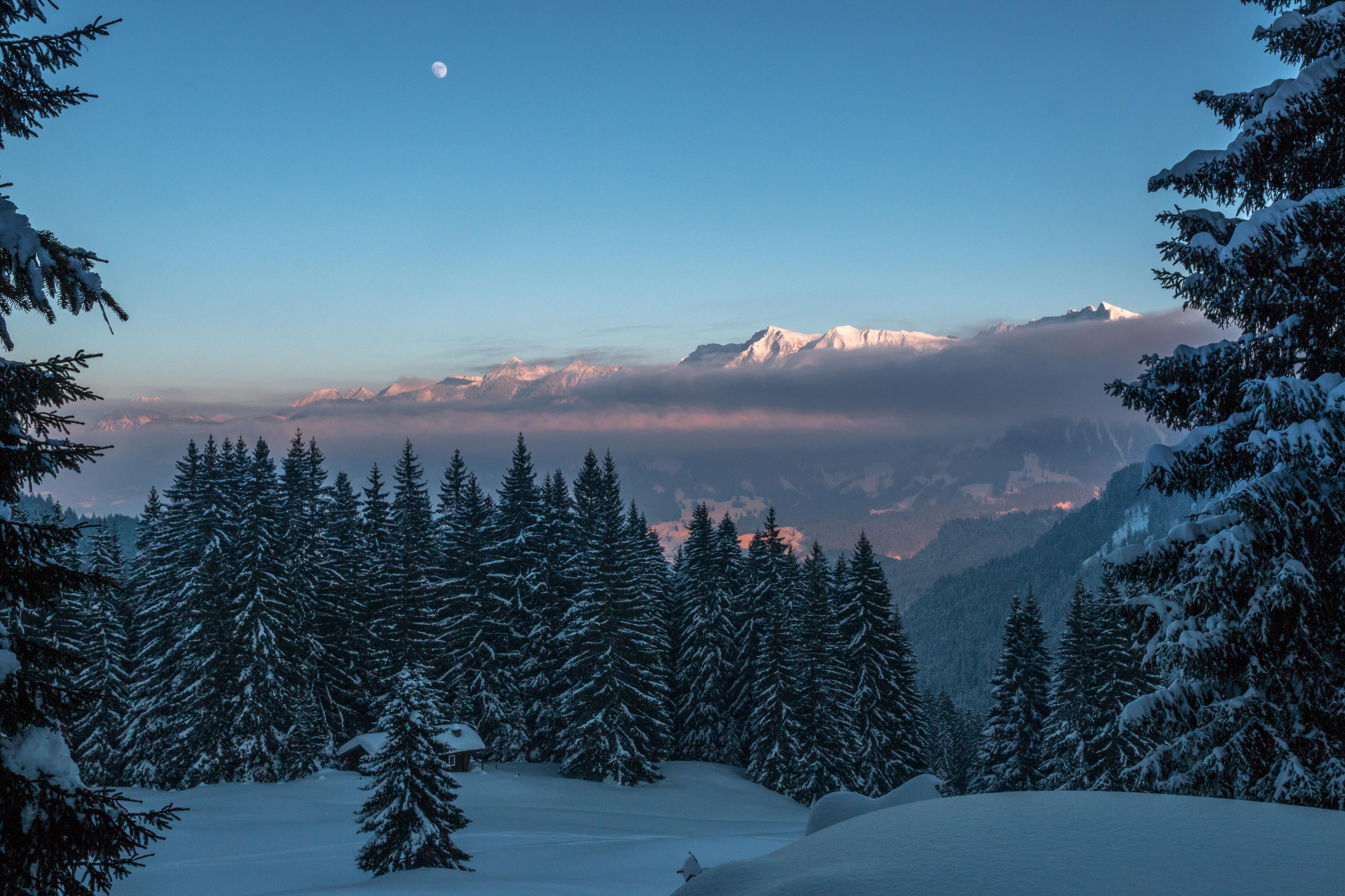 67716 Protetores de tela e papéis de parede Montanhas em seu telefone. Baixe Inverno, Natureza, Árvores, Montanhas, Crepúsculo, Neve fotos gratuitamente
