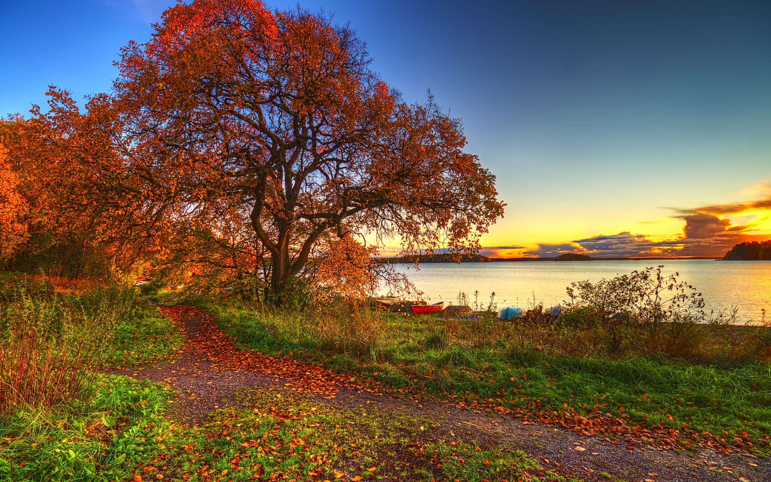 30406 download wallpaper Landscape, Trees, Autumn screensavers and pictures for free
