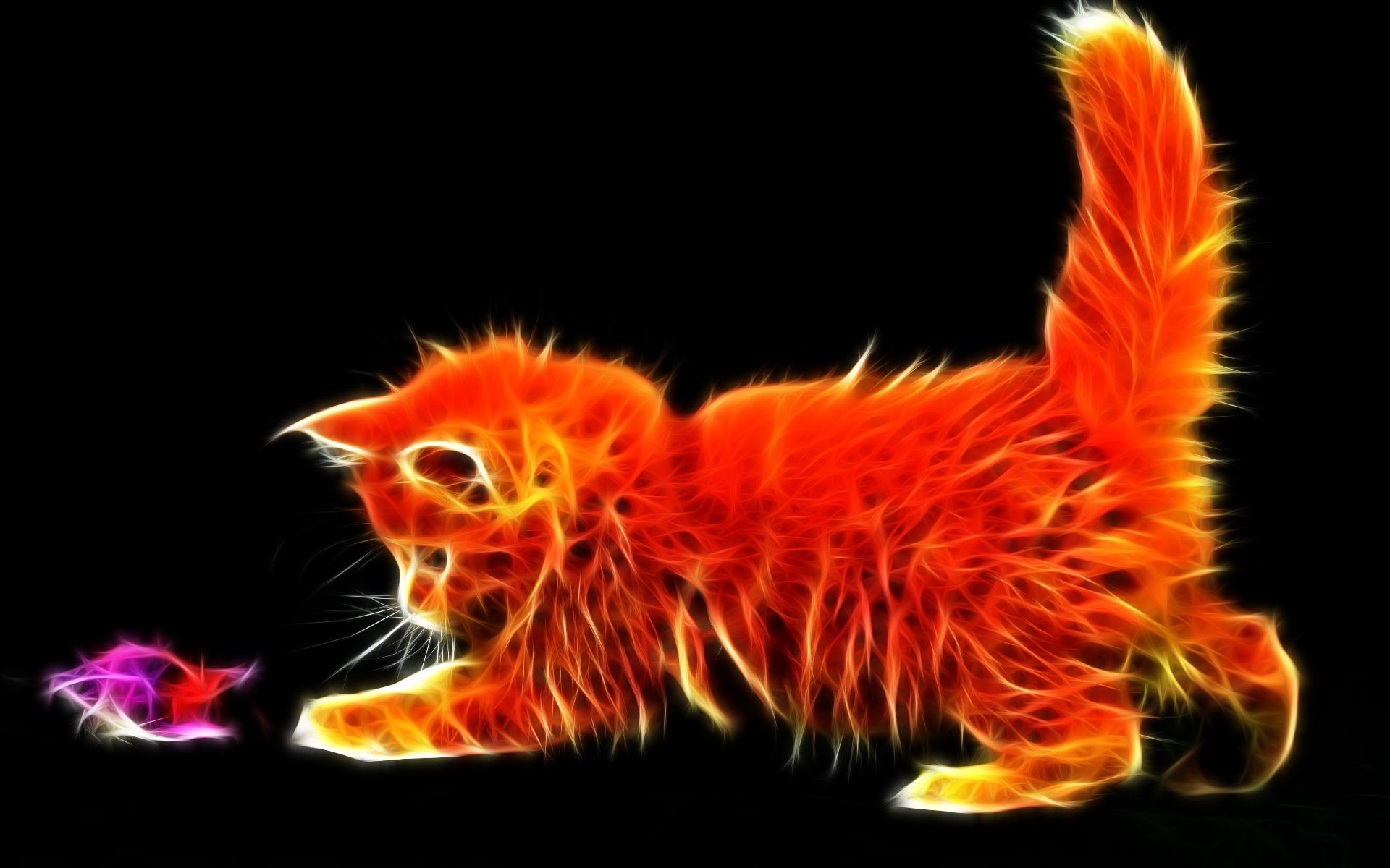 60692 download wallpaper Abstract, Fluffy, Kitty, Kitten, Toy, Playful screensavers and pictures for free