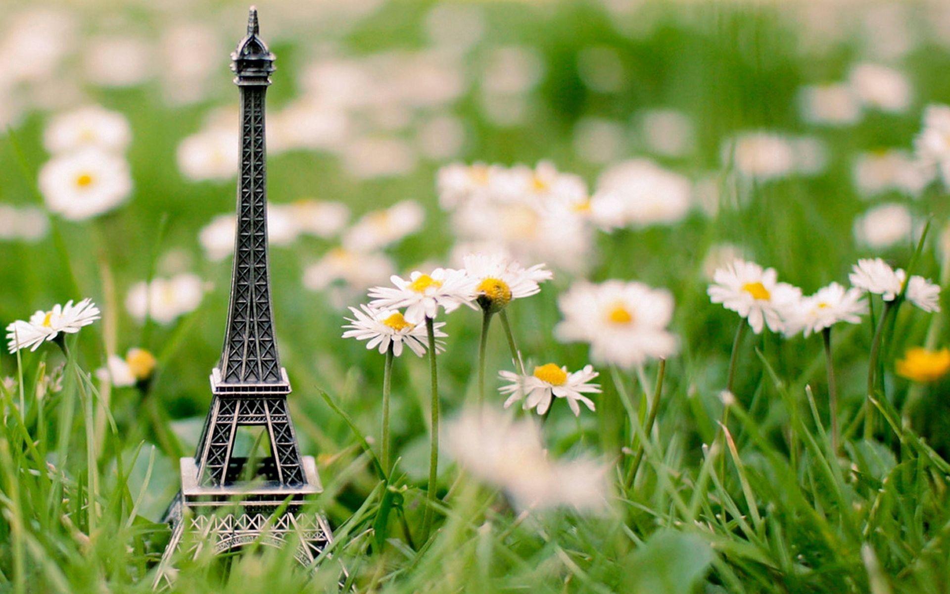 64477 télécharger le fond d'écran Divers, Herbe, Bibelot, Babiole, Tour Eiffel, Fleurs - économiseurs d'écran et images gratuitement
