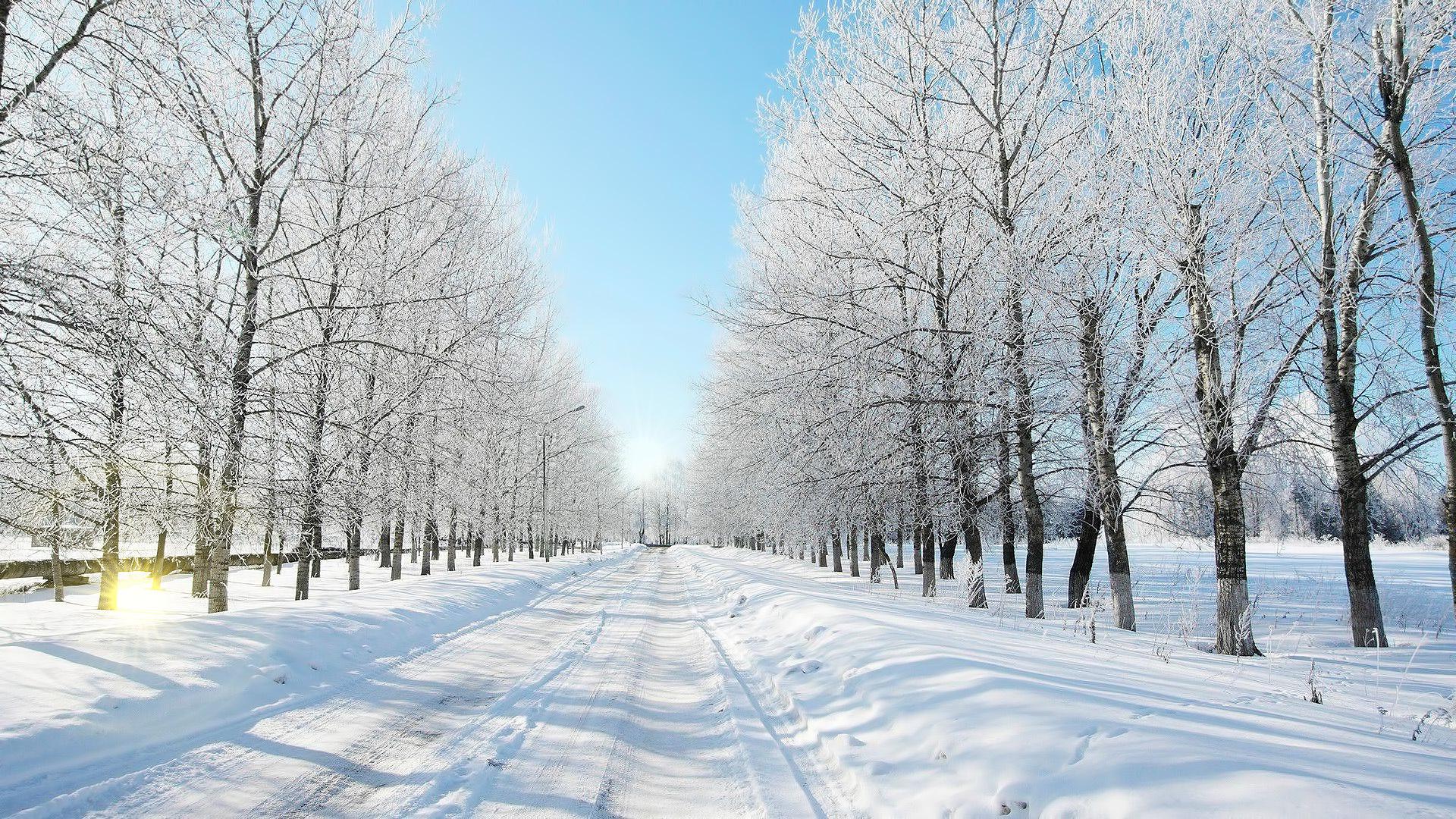 31918 скачать обои Пейзаж, Зима, Дороги - заставки и картинки бесплатно
