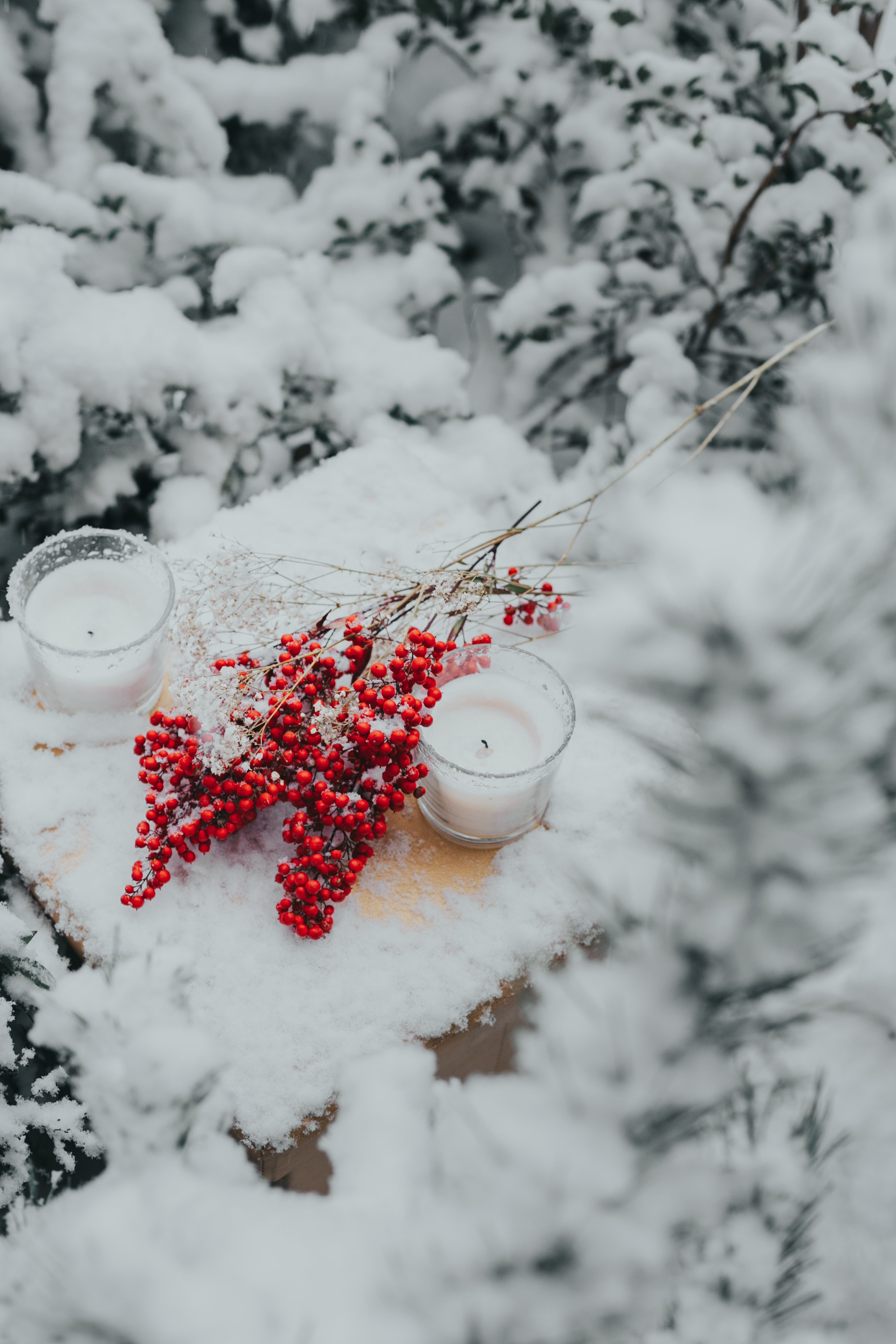 115863 Screensavers and Wallpapers Candles for phone. Download Snow, Candles, Berries, Miscellanea, Miscellaneous, Branches pictures for free