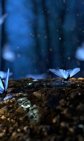 143890 descargar fondo de pantalla Macro, Mariposas, Bosque, Fantasía, Hongos: protectores de pantalla e imágenes gratis