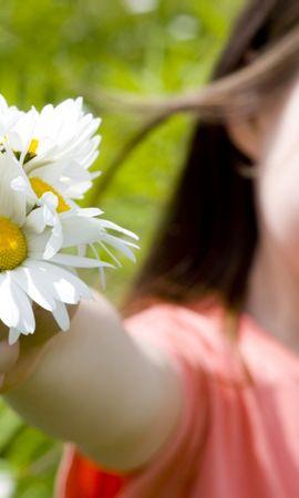 48085 télécharger le fond d'écran Plantes, Personnes, Fleurs, Enfants, Camomille - économiseurs d'écran et images gratuitement