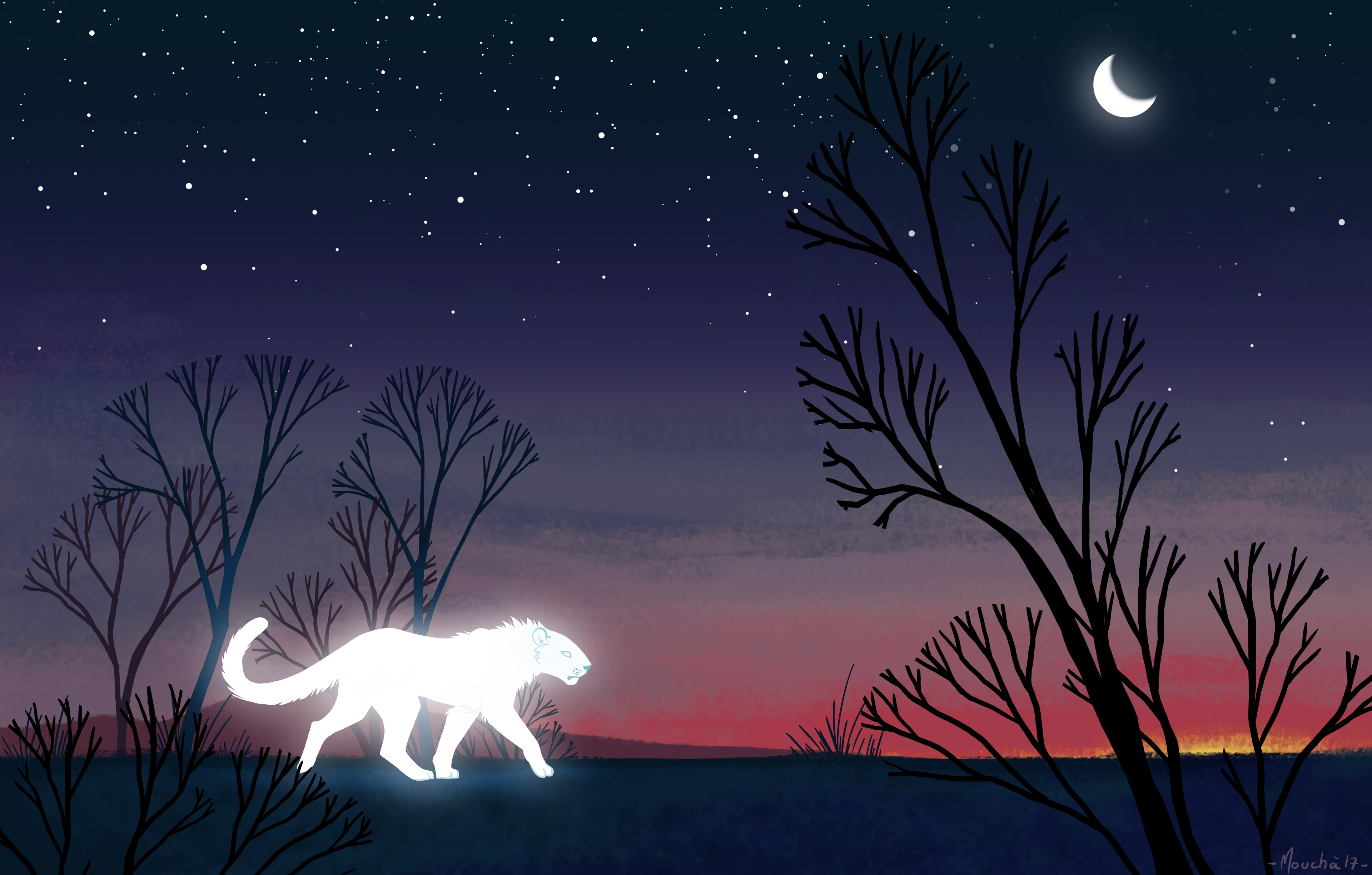 62484 download wallpaper Lioness, Predator, Glow, Night, Trees, Art screensavers and pictures for free