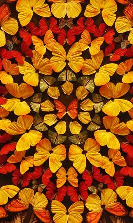 99989 descargar fondo de pantalla Miscelánea, Misceláneo, Mariposas, Alas, Color, Patrones: protectores de pantalla e imágenes gratis