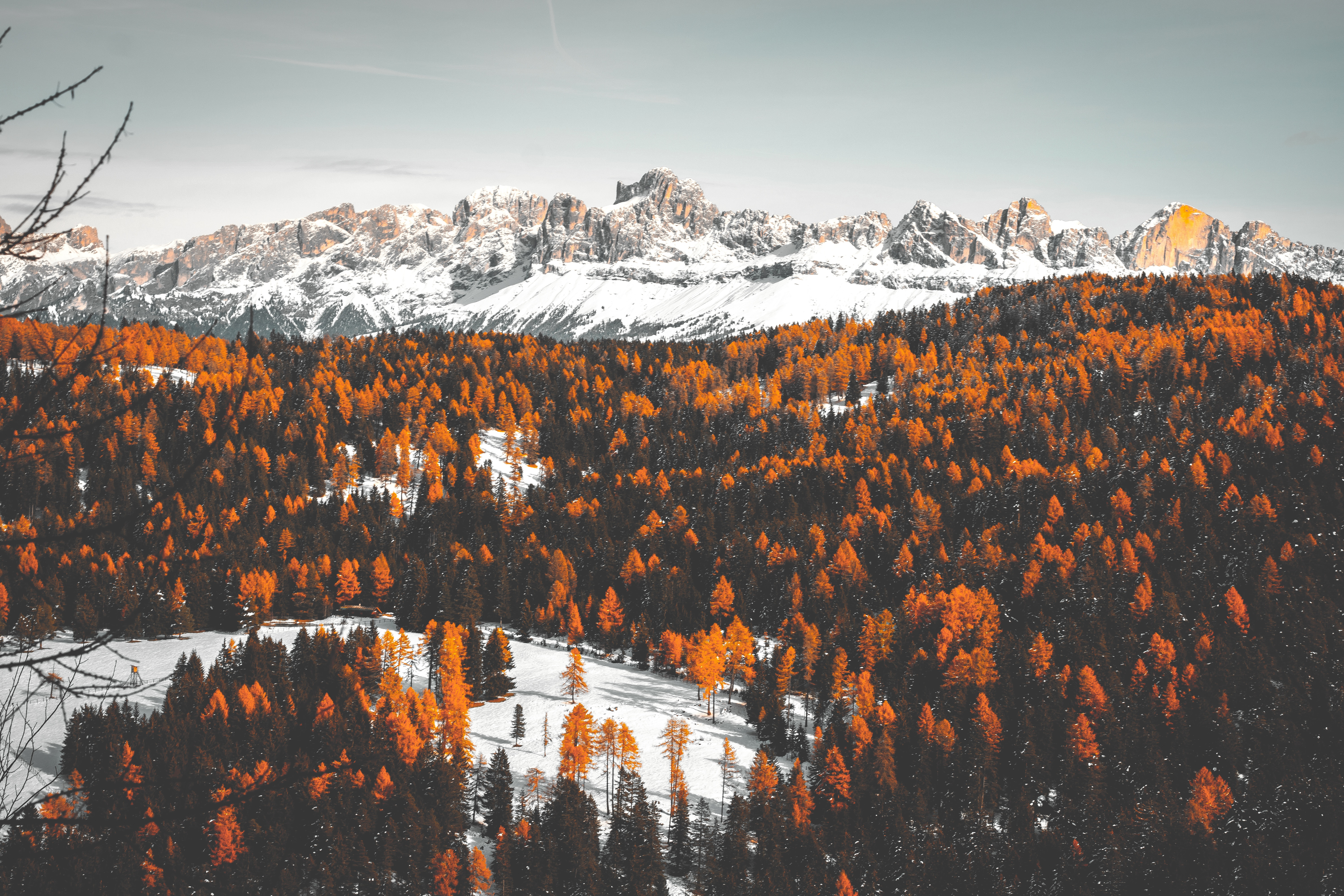 121403 download wallpaper Nature, Trees, Snow, Winter, Mountains screensavers and pictures for free
