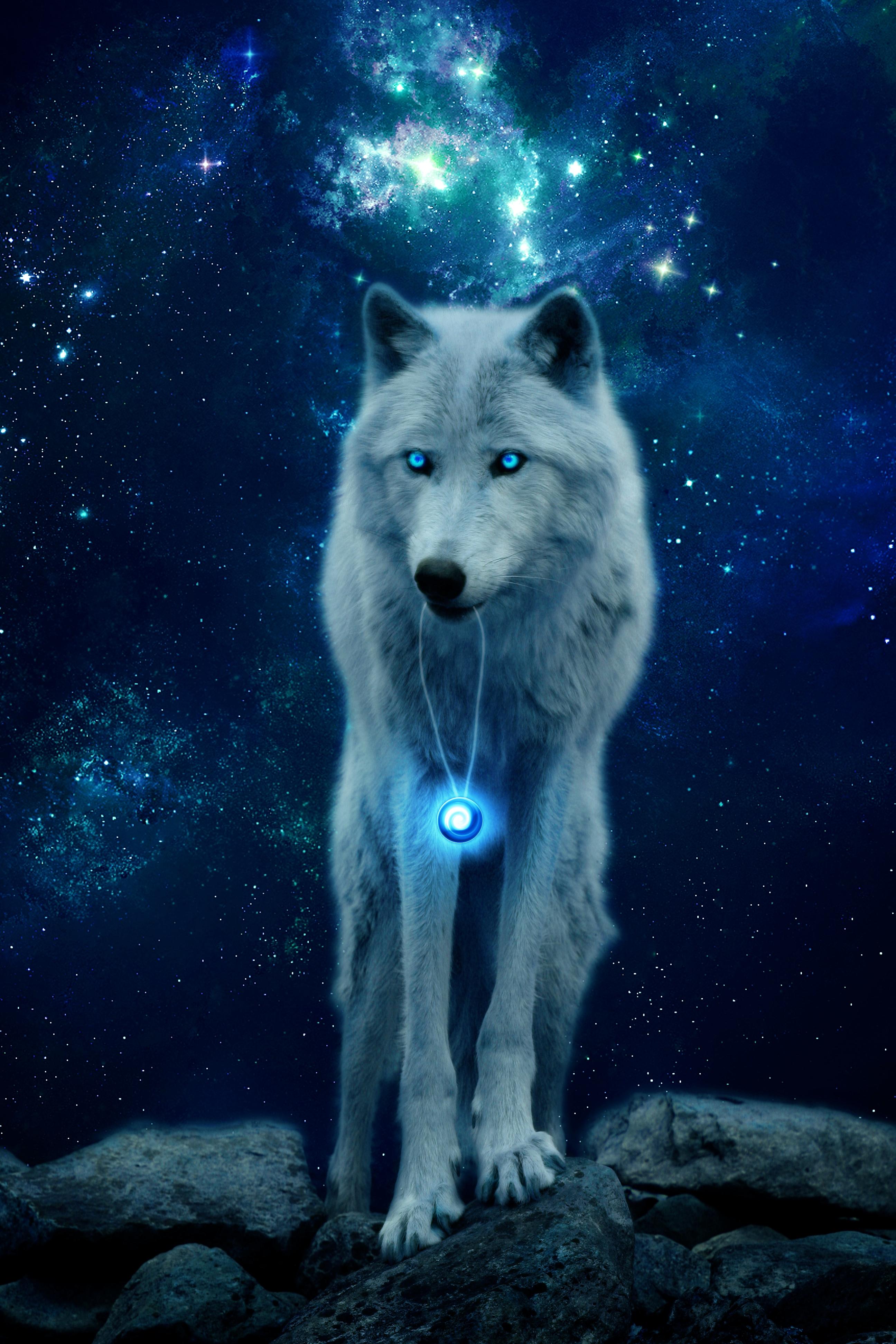 68868 скачать обои Животные, Хищник, Волк, Свечение, Холм, Дикая Природа, Фотошоп - заставки и картинки бесплатно