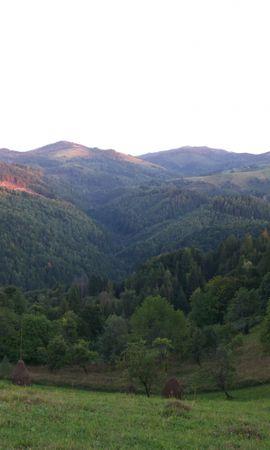 25401 скачать обои Пейзаж, Деревья, Горы - заставки и картинки бесплатно
