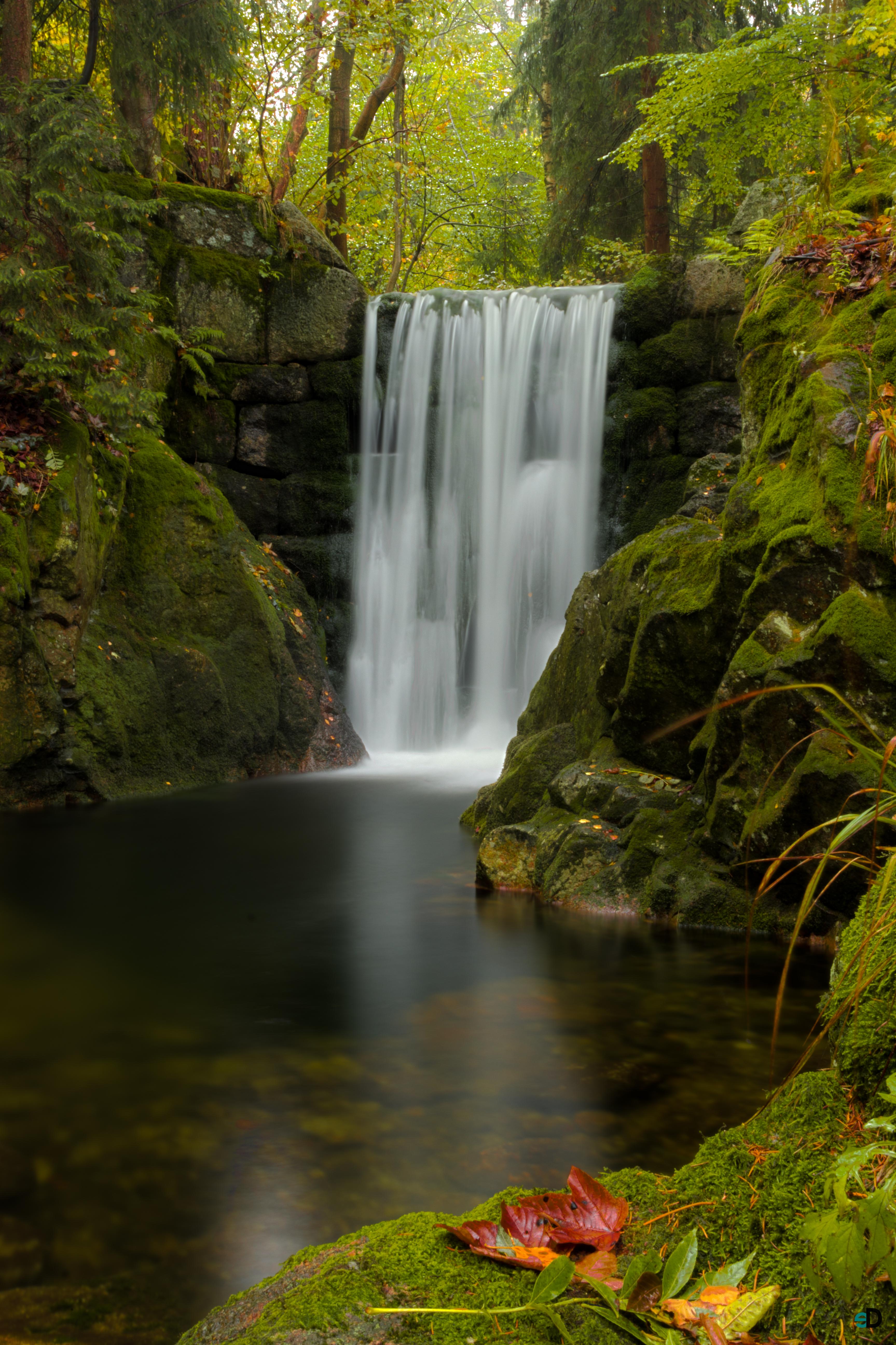 106376 скачать обои Растения, Водопад, Природа, Вода, Листья, Мох - заставки и картинки бесплатно