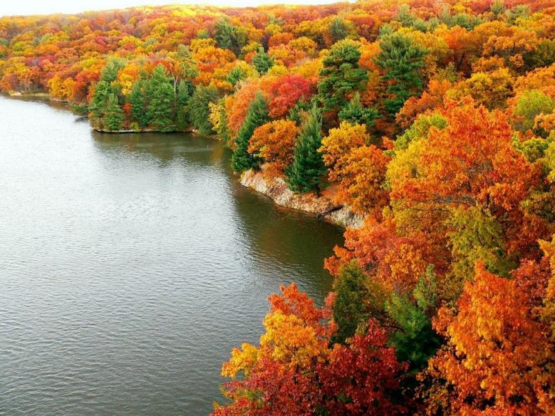 36062 обои 540x960 на телефон бесплатно, скачать картинки Осень, Пейзаж, Река 540x960 на мобильный