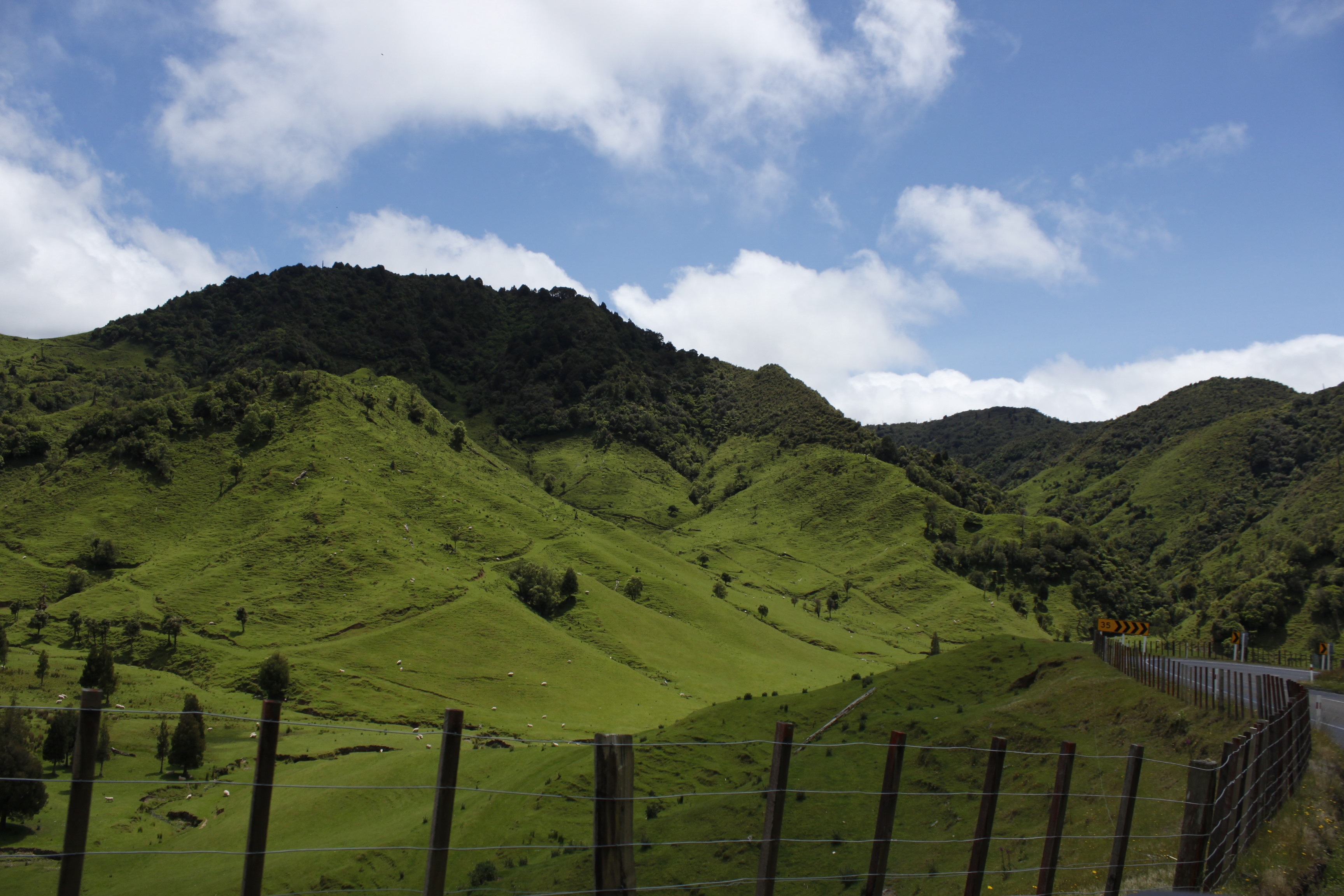 112379 Screensavers and Wallpapers New Zealand for phone. Download Nature, Grass, Mountains, New Zealand, Hill pictures for free
