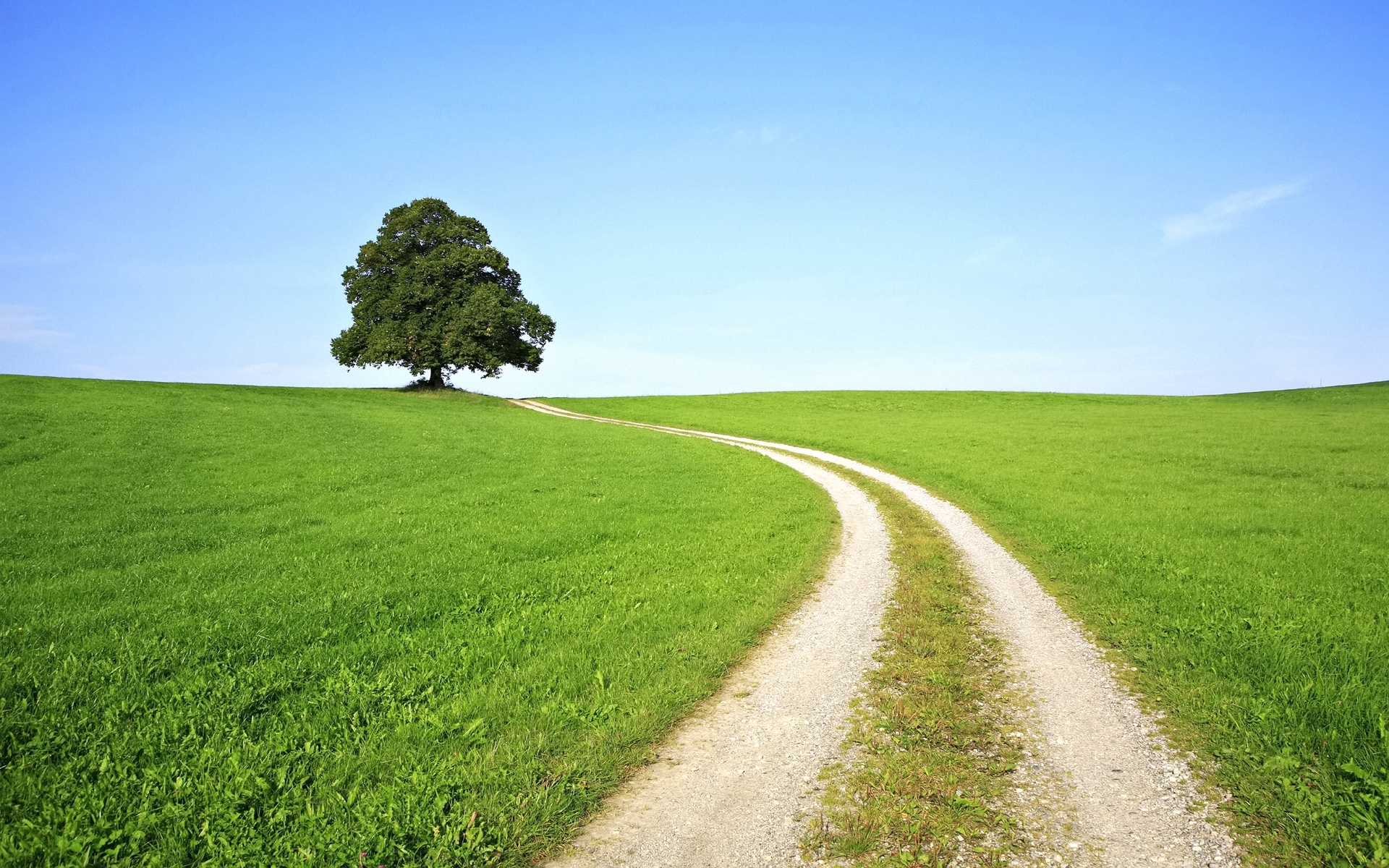 1389 download wallpaper Landscape, Trees, Grass, Roads screensavers and pictures for free
