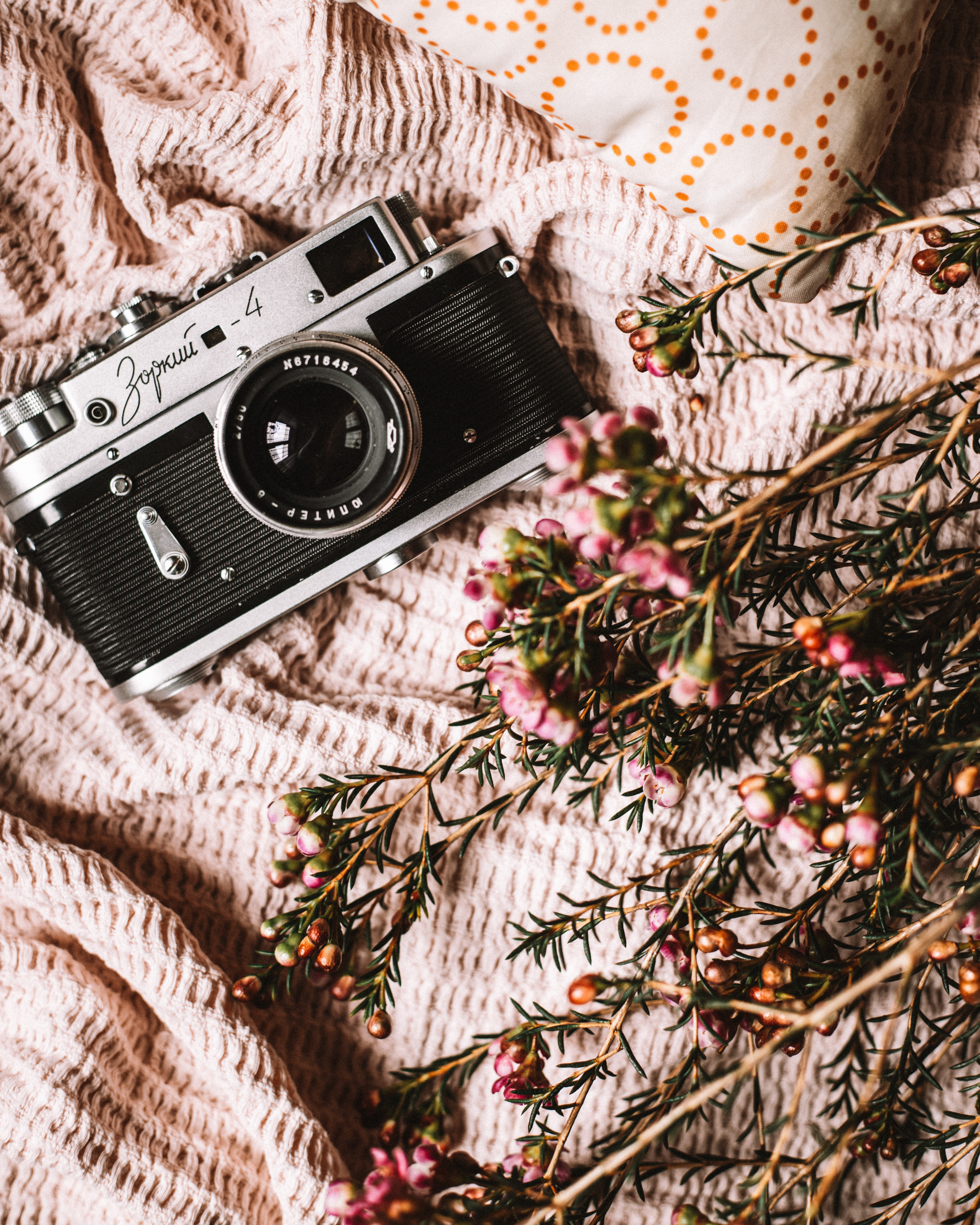 144130 Screensavers and Wallpapers Lens for phone. Download Flowers, Miscellanea, Miscellaneous, Cloth, Retro, Lens, Camera pictures for free