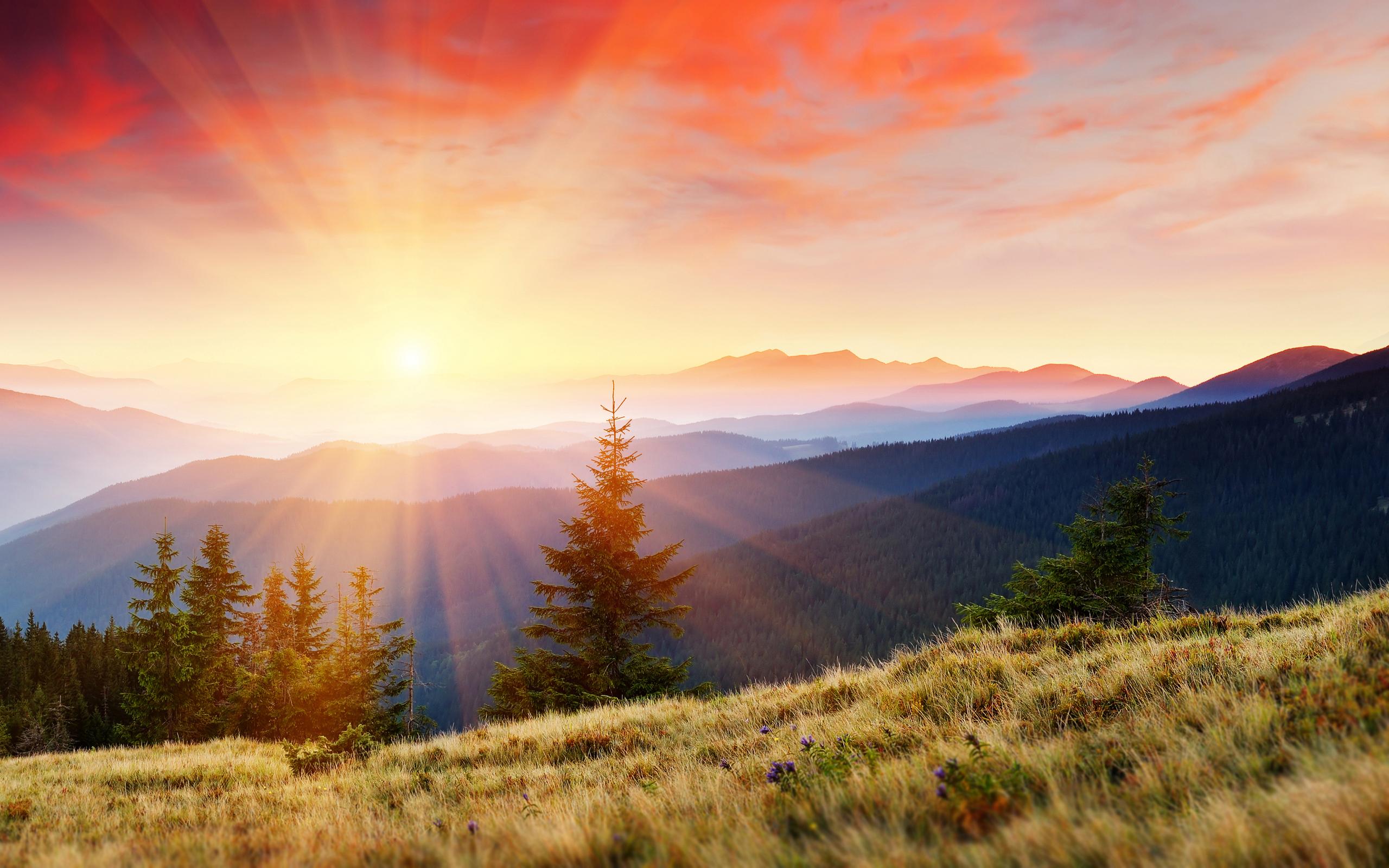 25971 скачать обои Пейзаж, Деревья, Горы, Солнце - заставки и картинки бесплатно