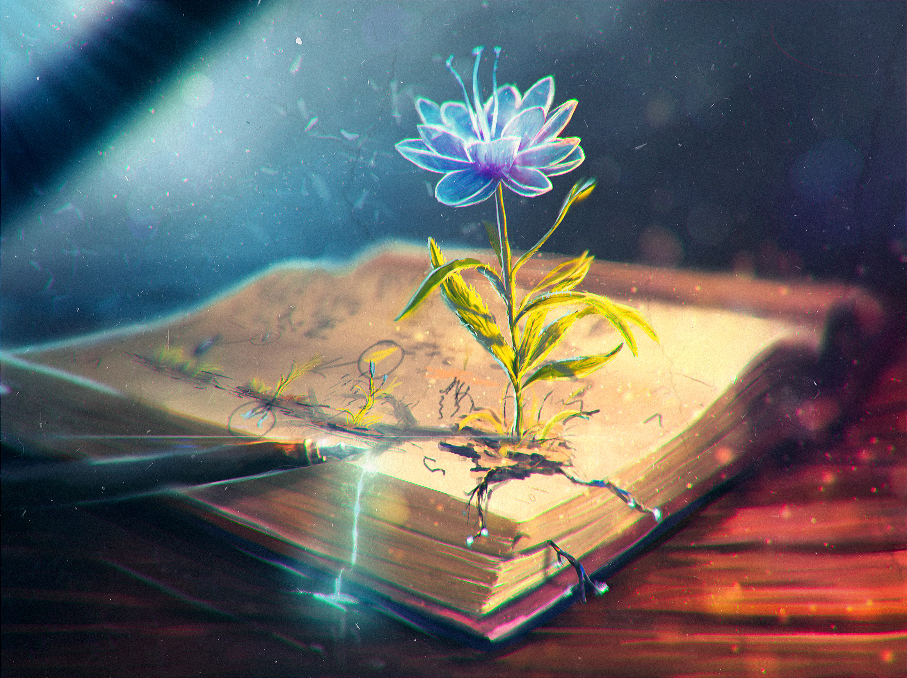 58063 download wallpaper Abstract, Feather, Flower, Book, Pen screensavers and pictures for free