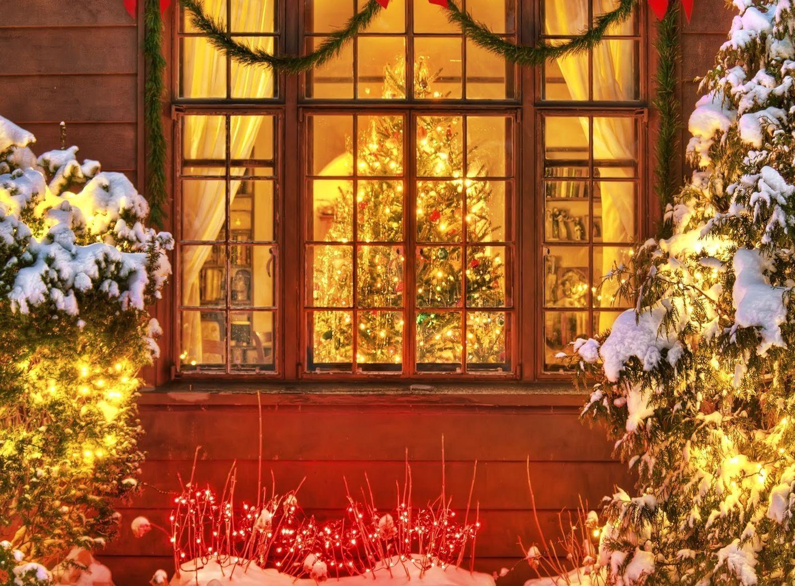 140813 скачать обои Праздники, Рождество, Новый Год, Гирлянды, Окно, Елки - заставки и картинки бесплатно
