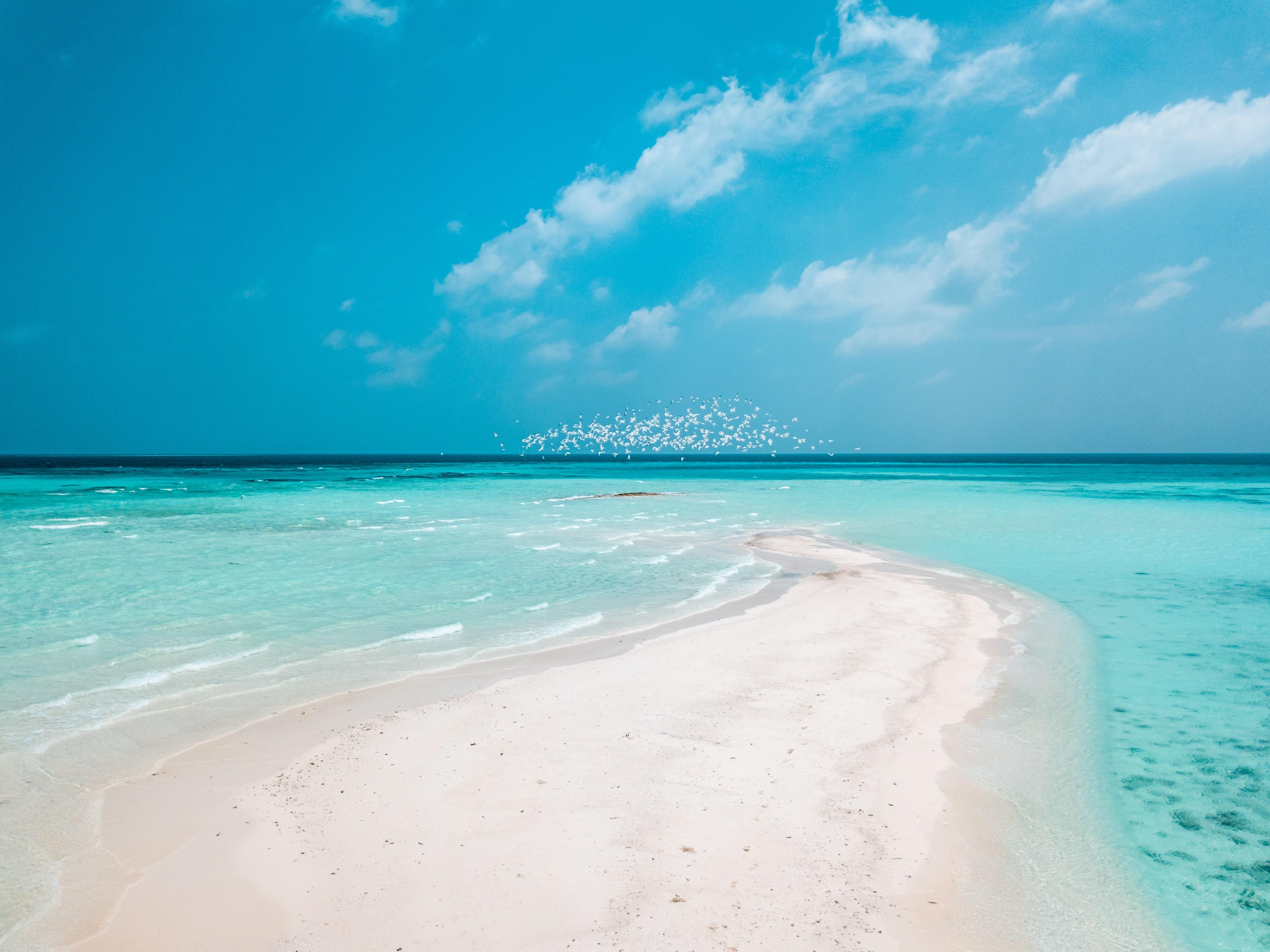 94738 Hintergrundbild herunterladen Strand, Küste, Natur, Sand, Horizont - Bildschirmschoner und Bilder kostenlos