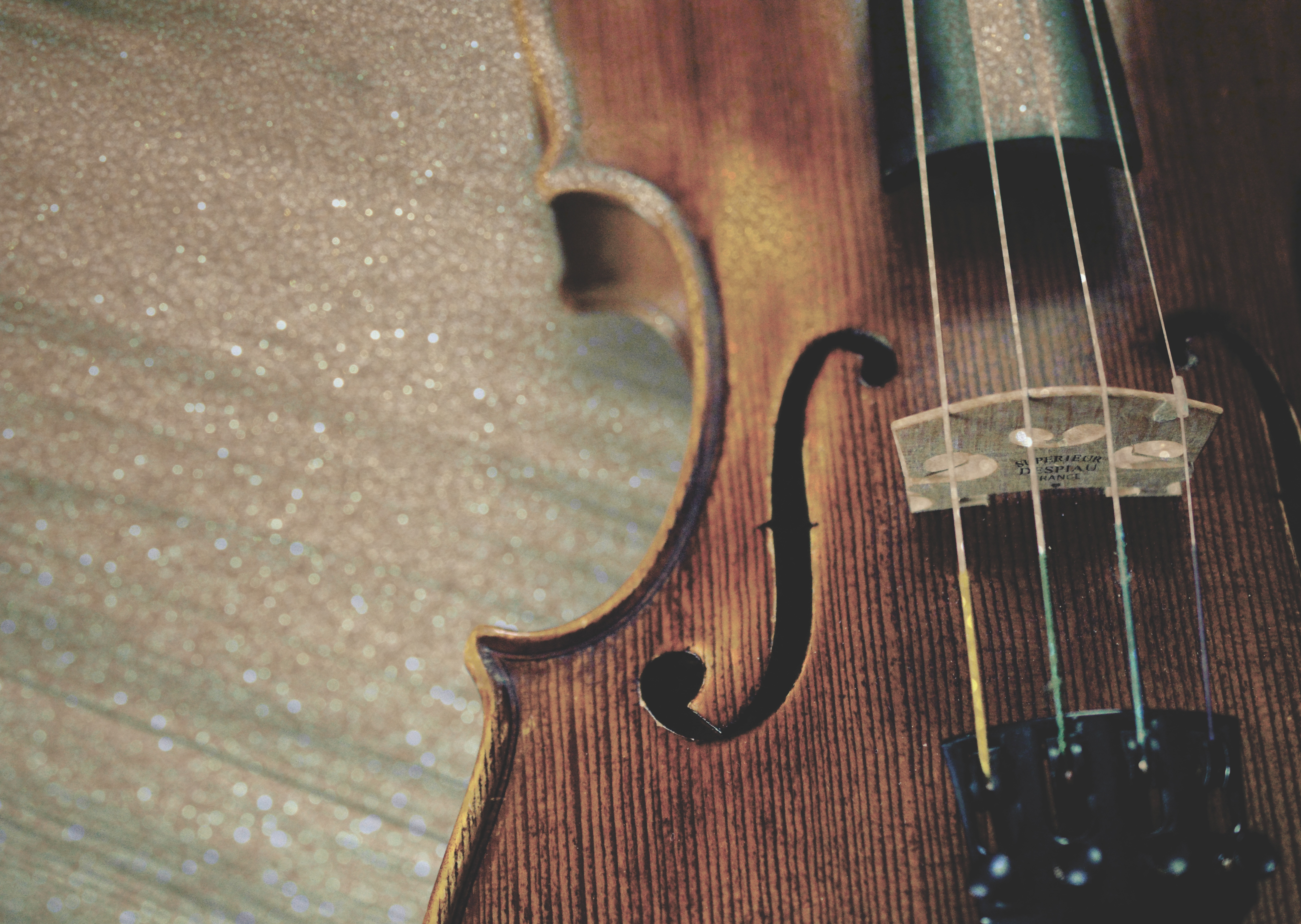 123100 Screensavers and Wallpapers Wooden for phone. Download Music, Wood, Wooden, Strings, Violin pictures for free