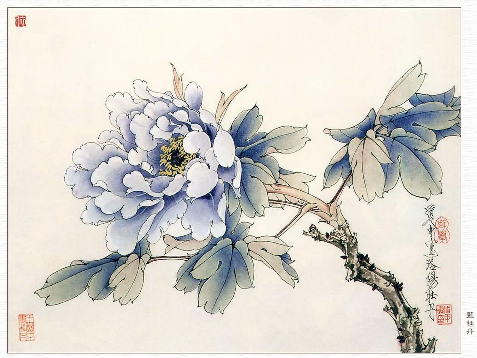 9539 descargar fondo de pantalla Plantas, Flores: protectores de pantalla e imágenes gratis