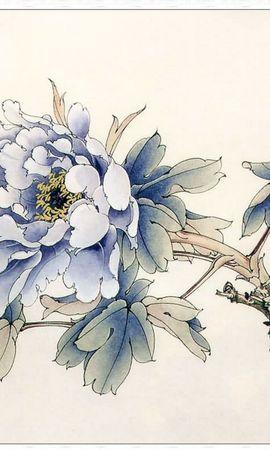 9539 скачать обои Растения, Цветы - заставки и картинки бесплатно