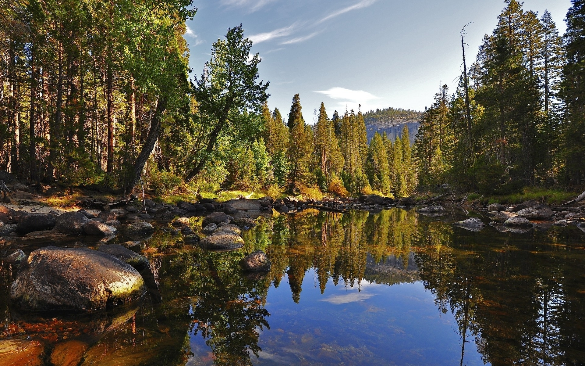 49884 download wallpaper Landscape, Nature, Trees, Lakes screensavers and pictures for free