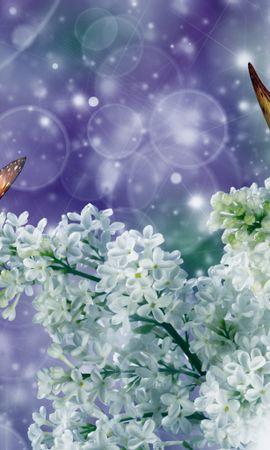 22018 скачать обои Бабочки, Насекомые, Рисунки - заставки и картинки бесплатно