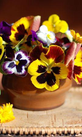 20129 télécharger le fond d'écran Fêtes, Plantes, Fleurs, Bouquets - économiseurs d'écran et images gratuitement