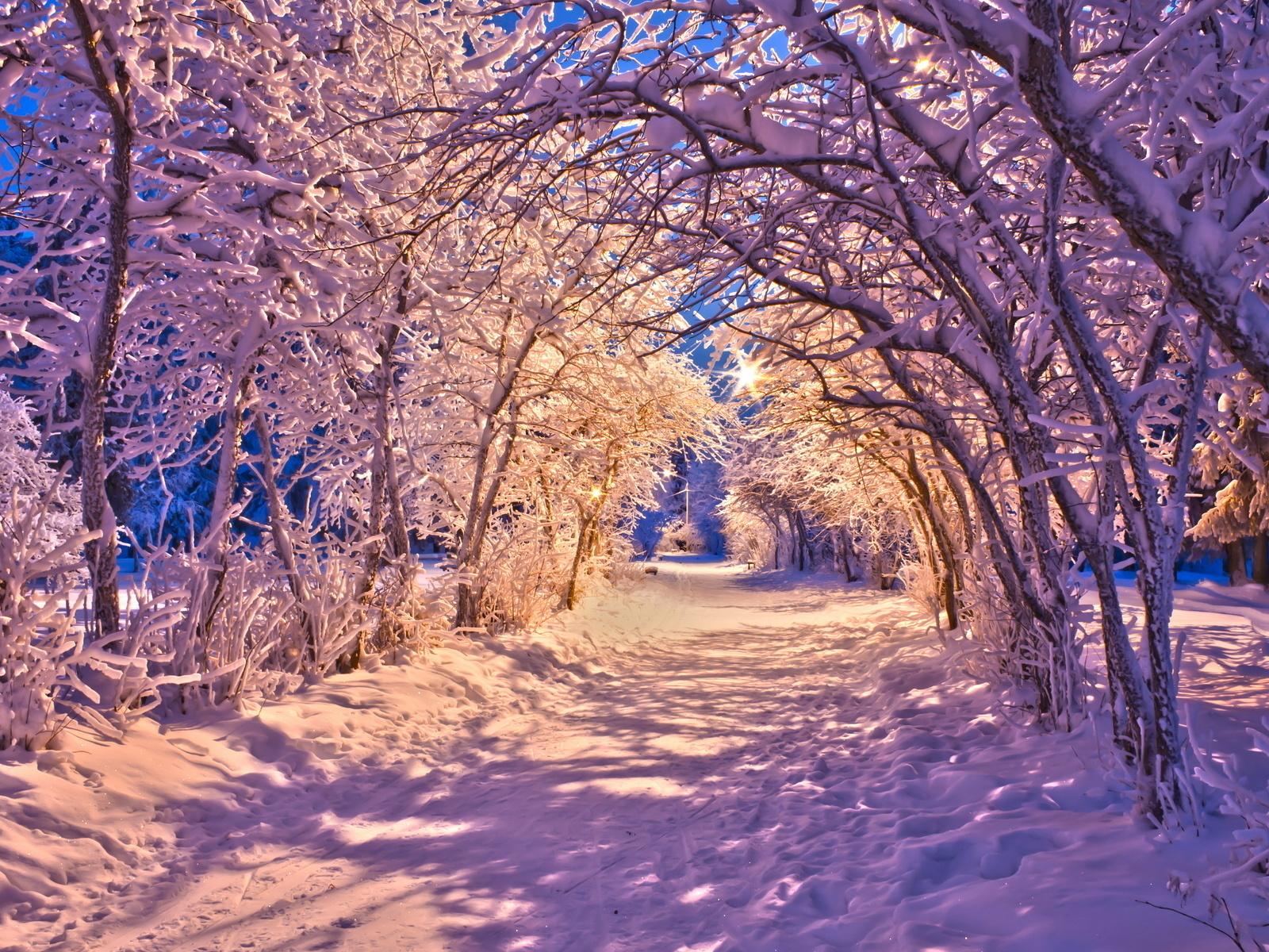 22022 скачать обои Пейзаж, Зима, Деревья, Дороги, Снег - заставки и картинки бесплатно