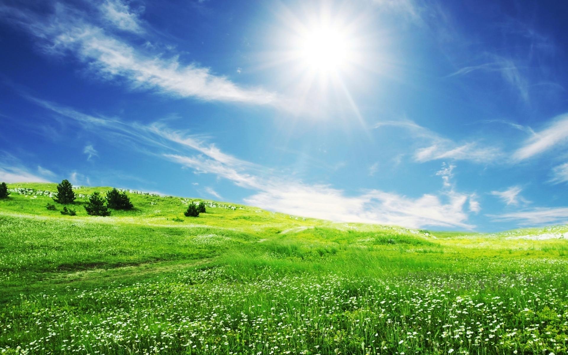 2873 скачать обои Пейзаж, Трава, Небо, Солнце - заставки и картинки бесплатно
