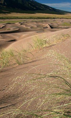 23678 скачать обои Пейзаж, Трава, Песок, Пустыня - заставки и картинки бесплатно
