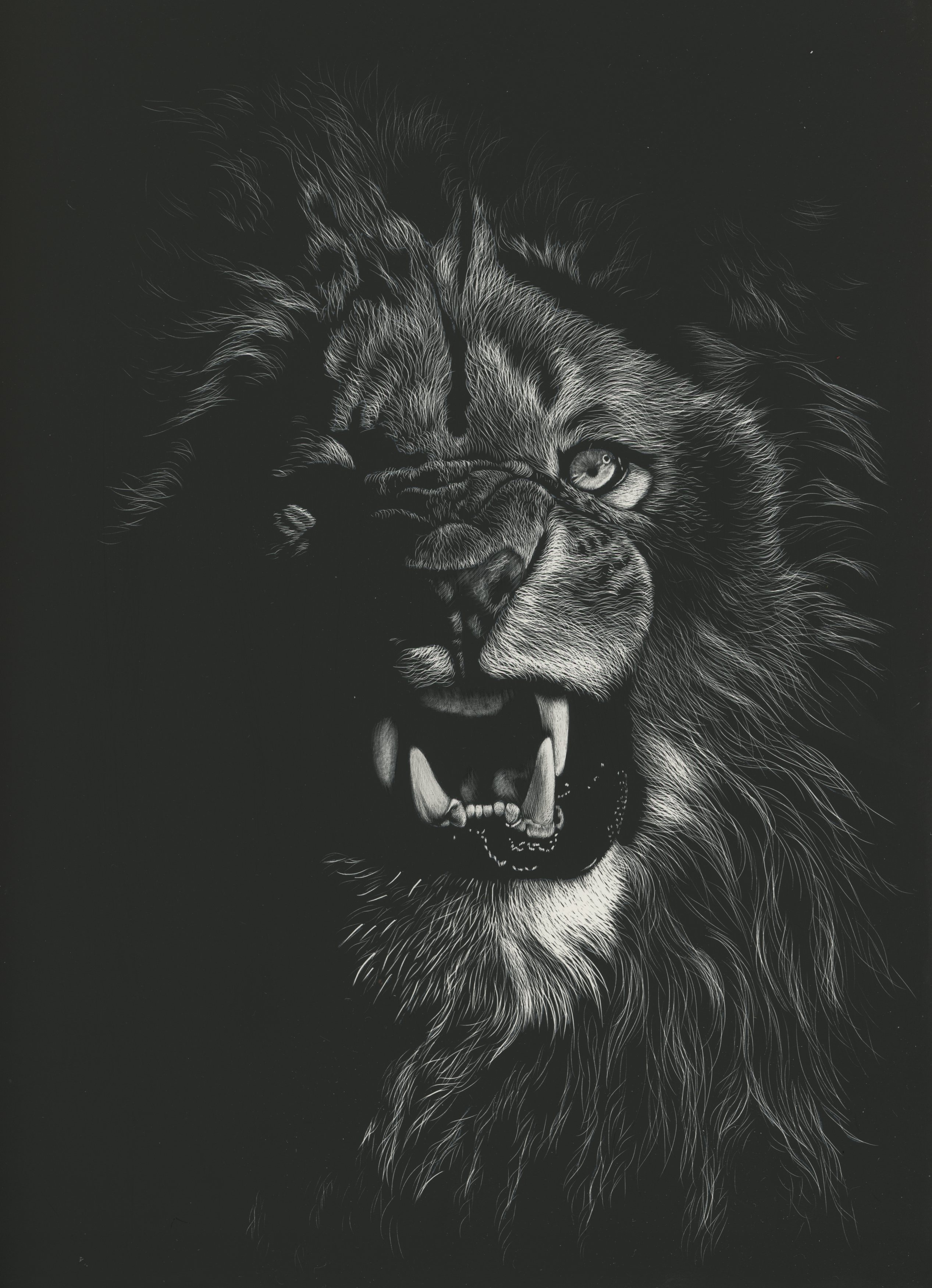 134427 Screensavers and Wallpapers Bw for phone. Download Drawing, Art, Grin, Picture, Lion, Bw, Chb pictures for free